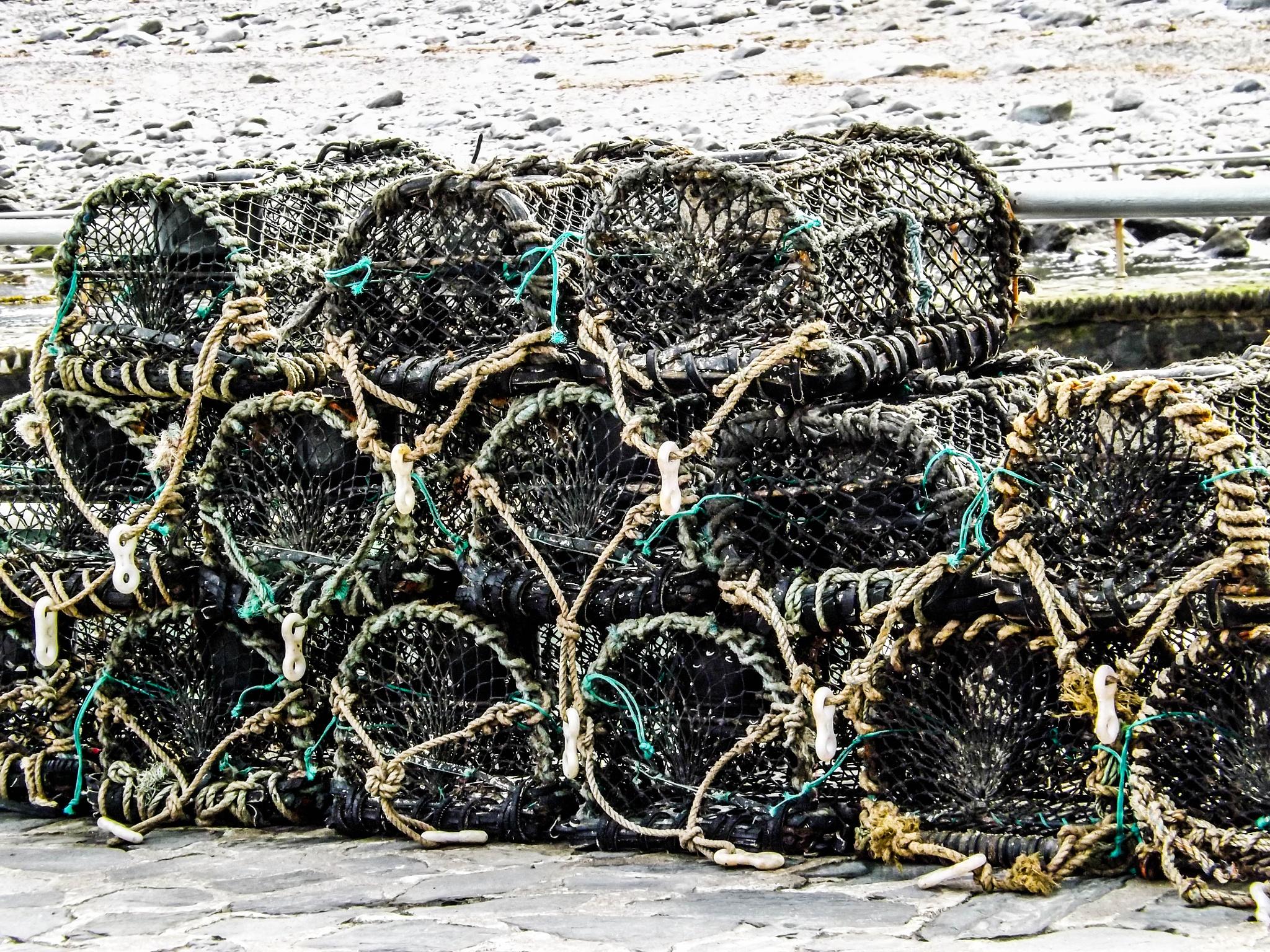 Lobster traps by Gemma Sizer