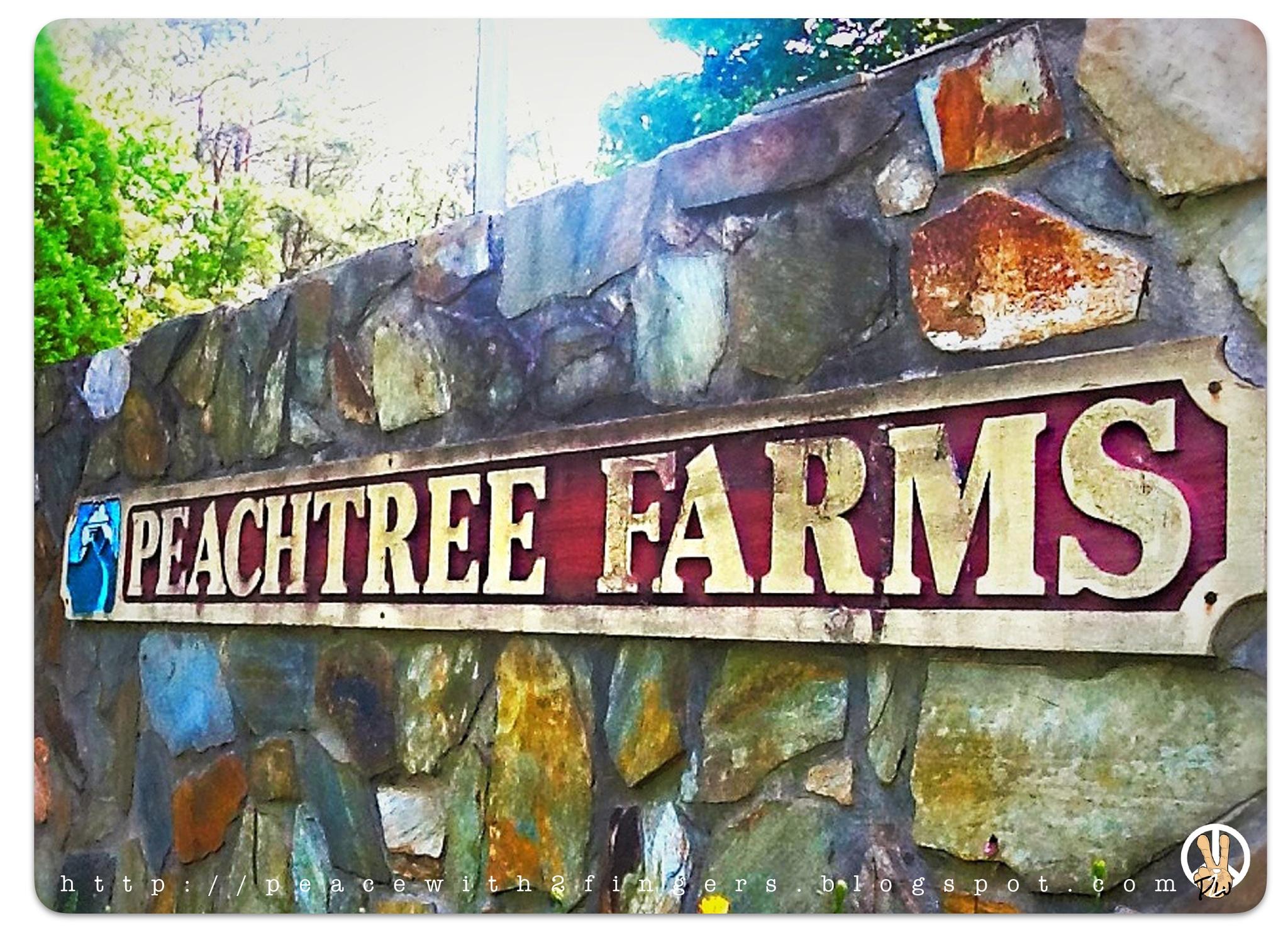 Peachtree Farms. by Darryl Weddington