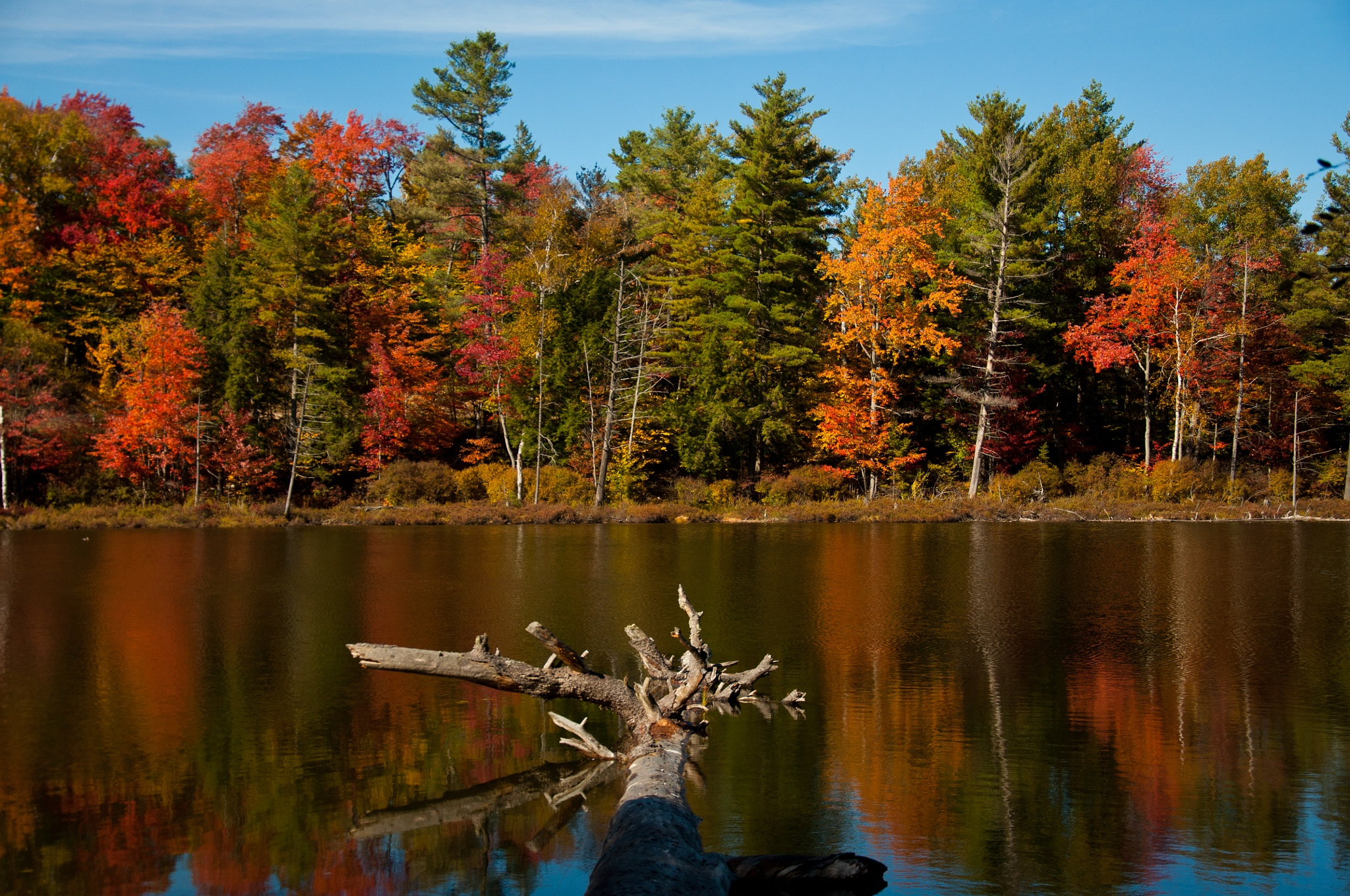 Adirondack Fall Color by ADKPhotoTaker