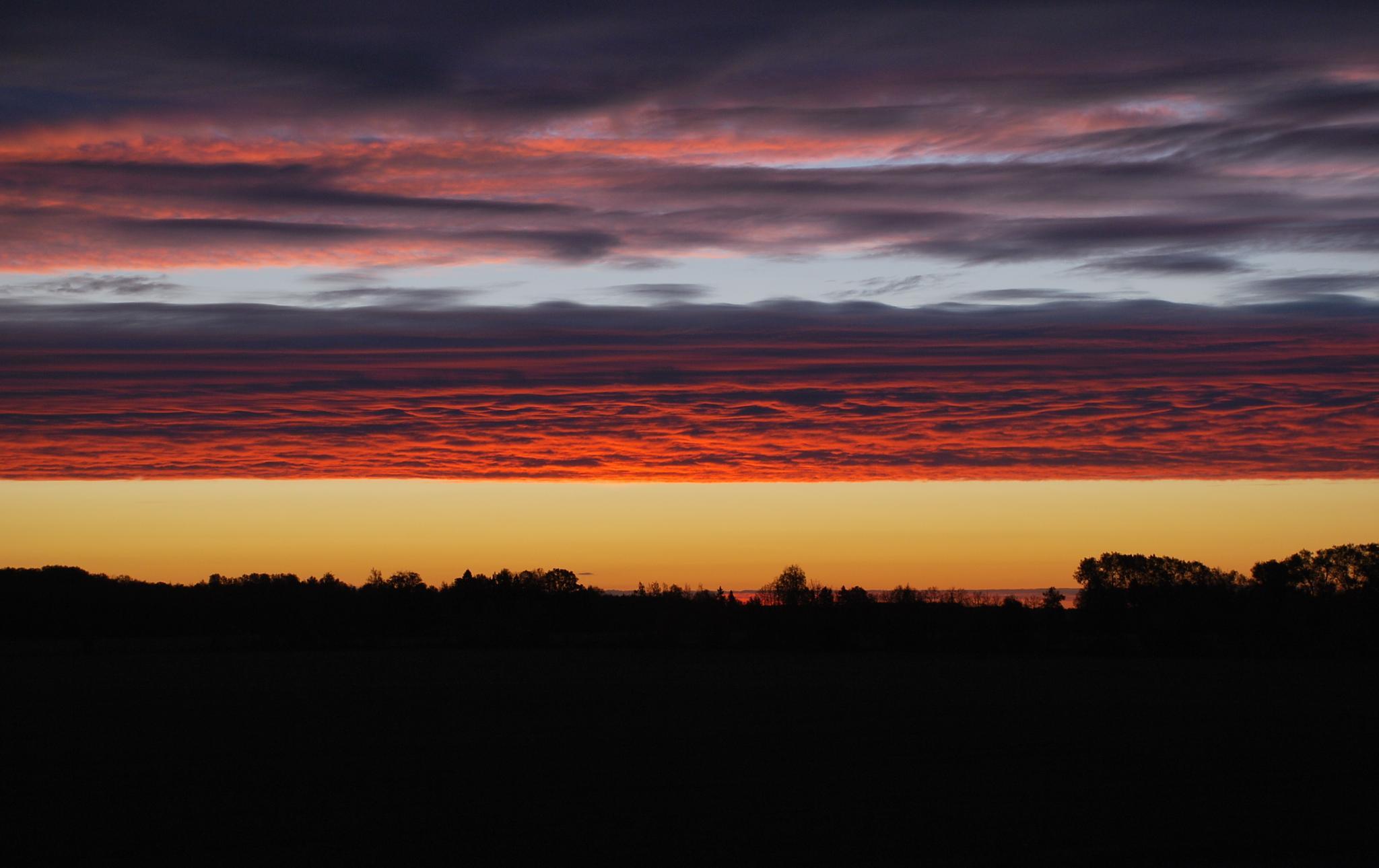At dawn by ElenaNosik