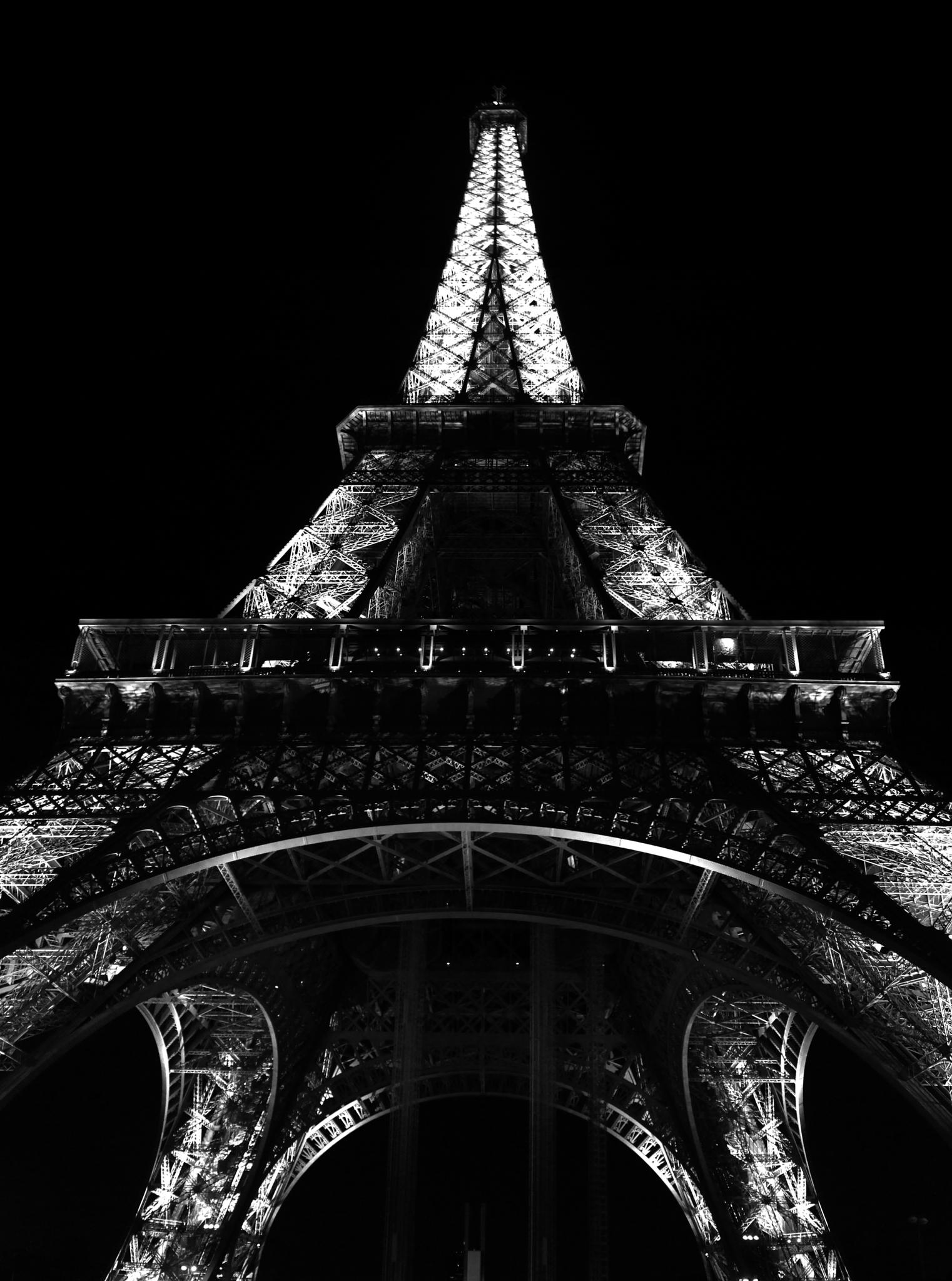 Oui oui Paris by Ricardo Ruytenberg