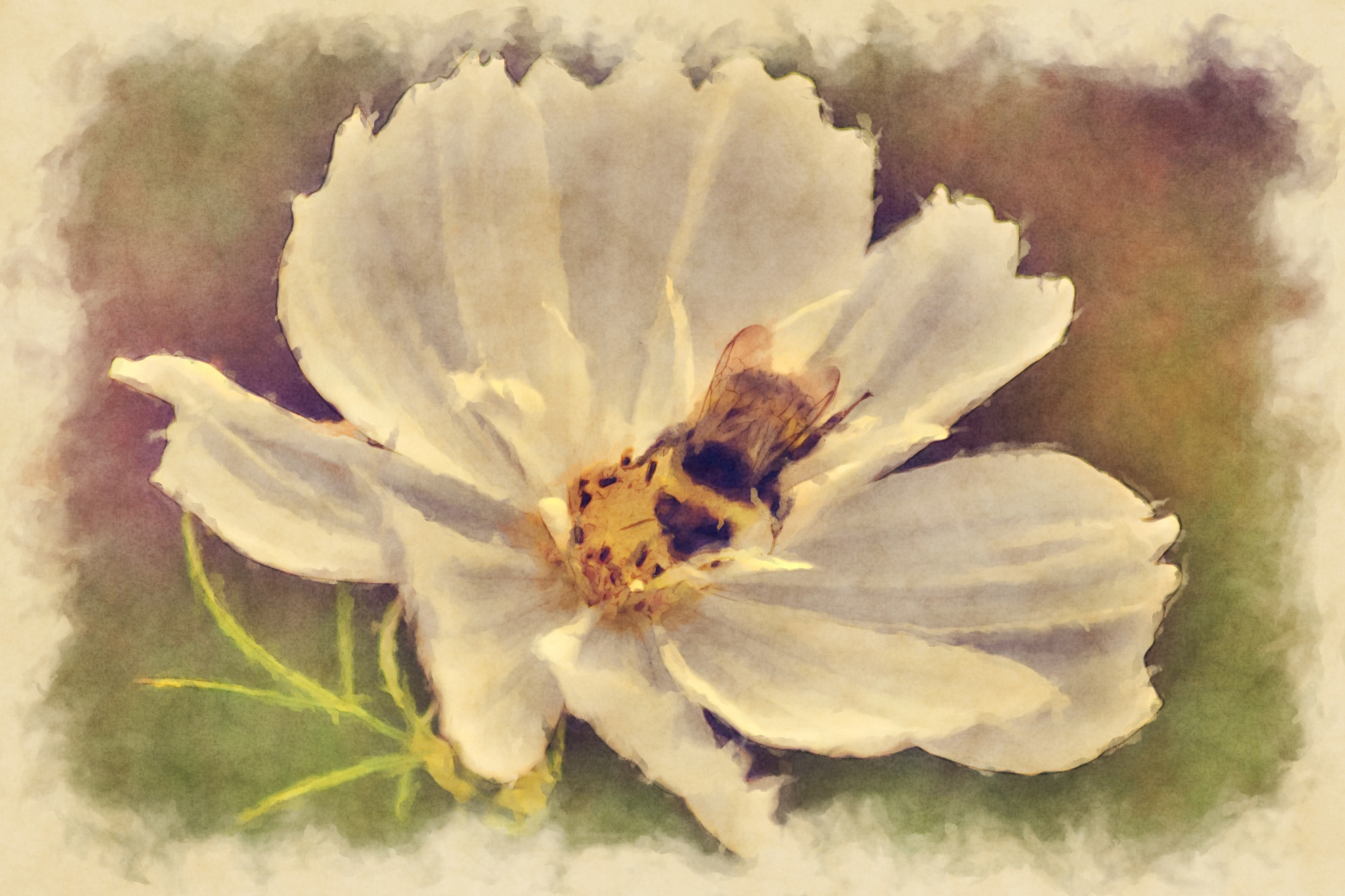 Flower & bee by Ibolya Szebeni