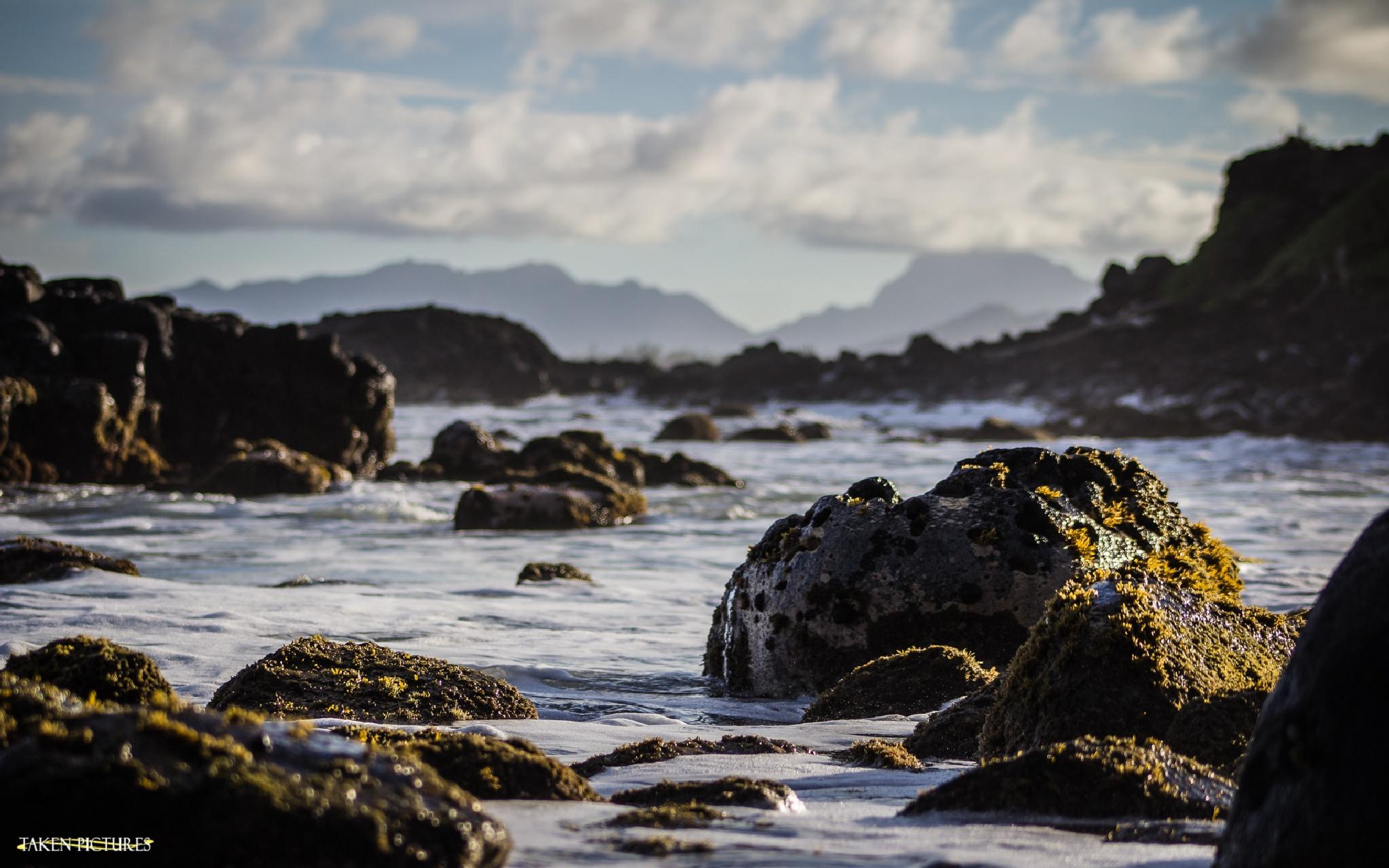 Along The Rocky Shore by Richard Taken