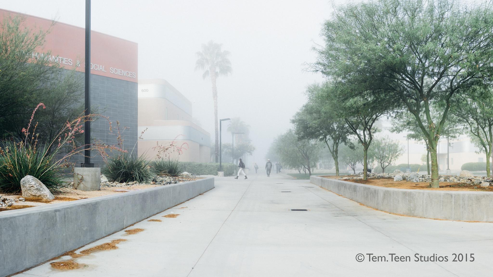 Brenizer of College Walkway by George Elias