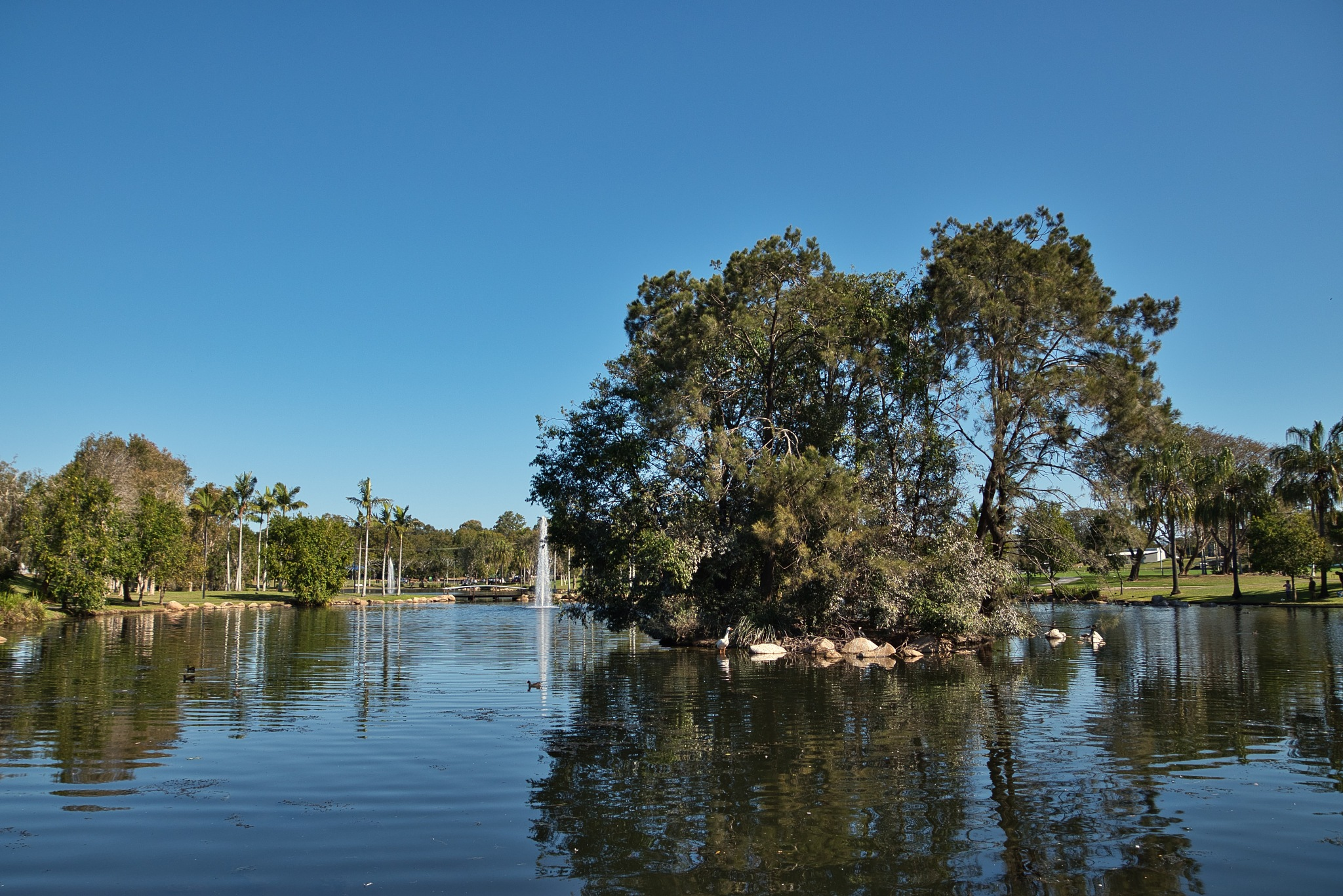 Centenary Lakes Caboolture Qld by Kim McGlinchey