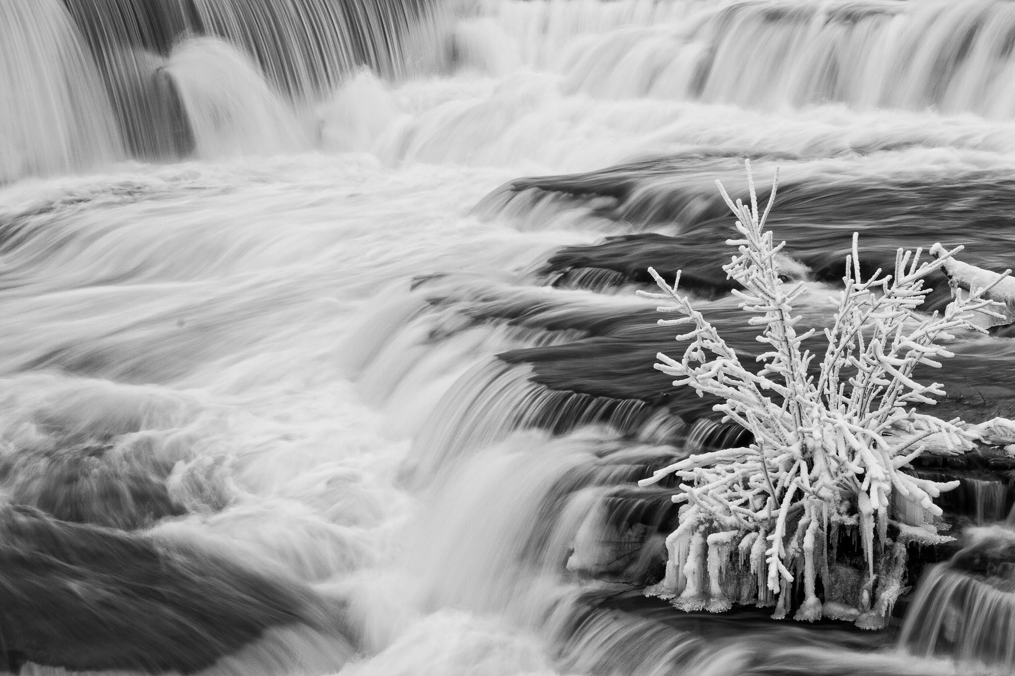 Frozen In Ice by Paul Berkloo