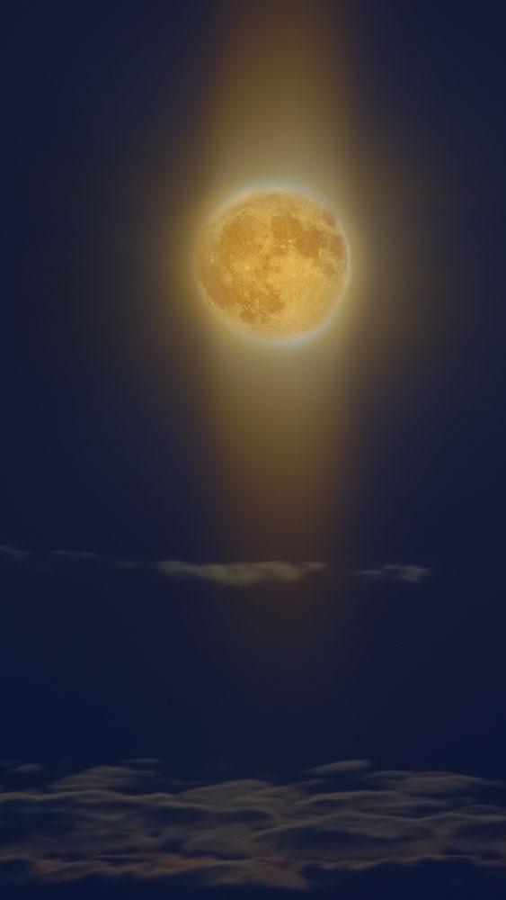 moonlight by rys.roman