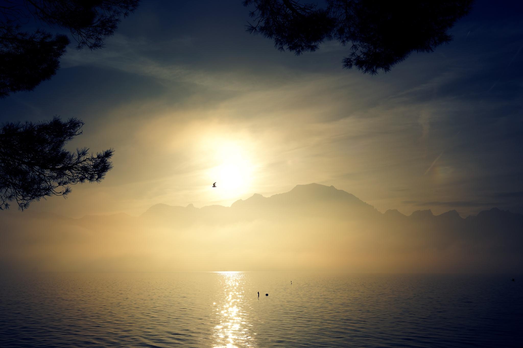 Lake Geneva and Alps (16), color by Vladimir Domashko