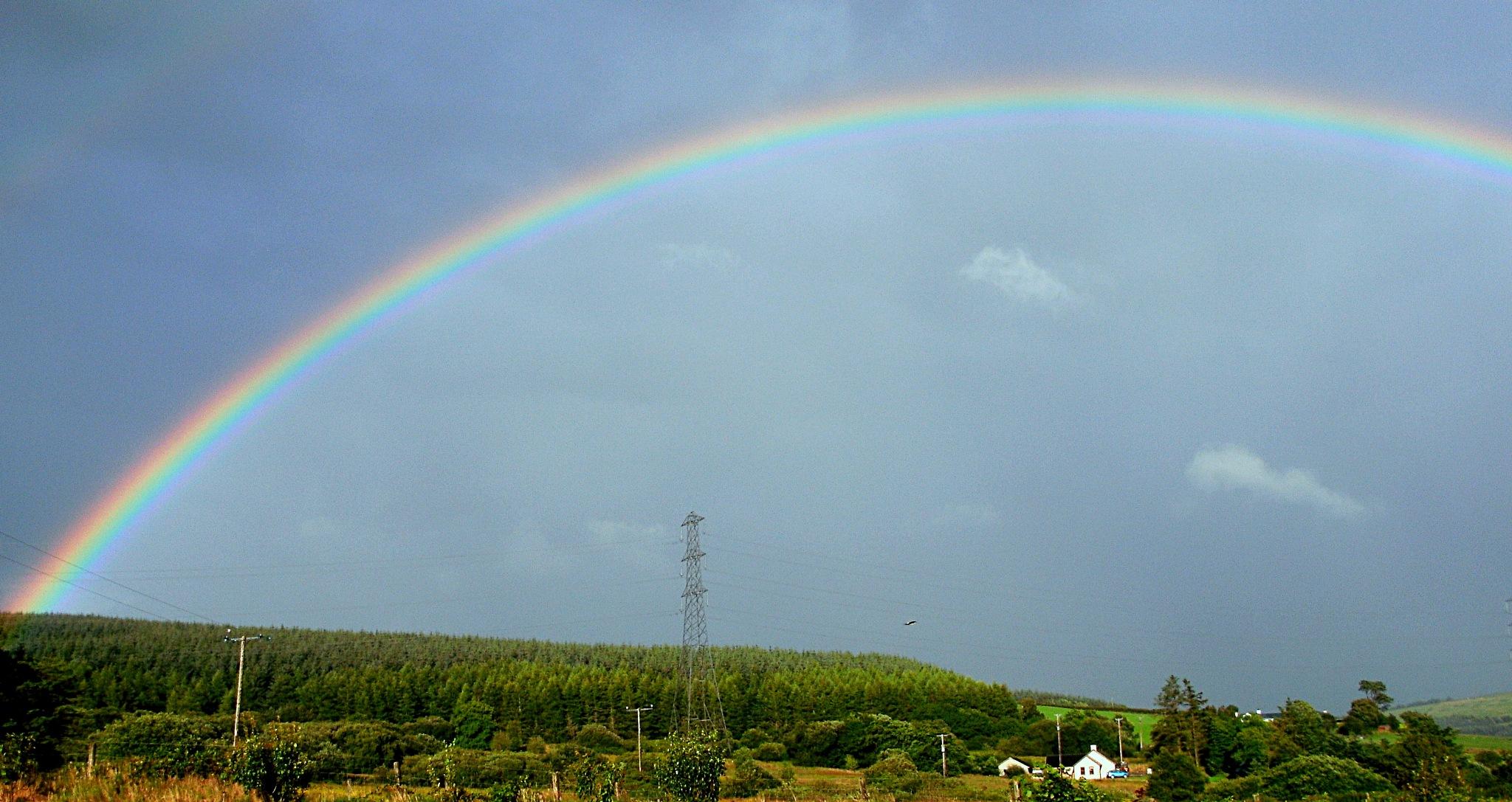 Rainbow 1 by Kenny Francis