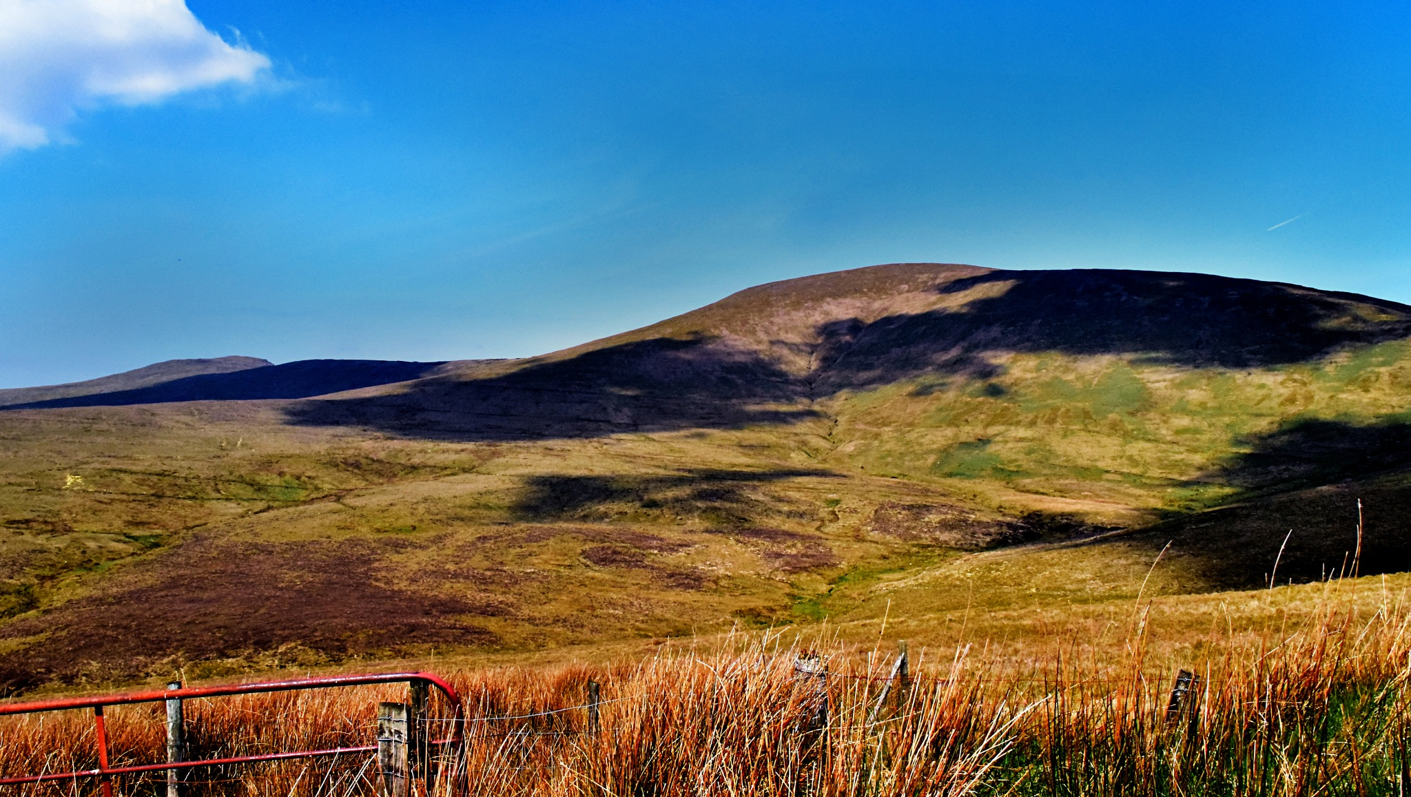 Tyrone Hills by Kenny Francis