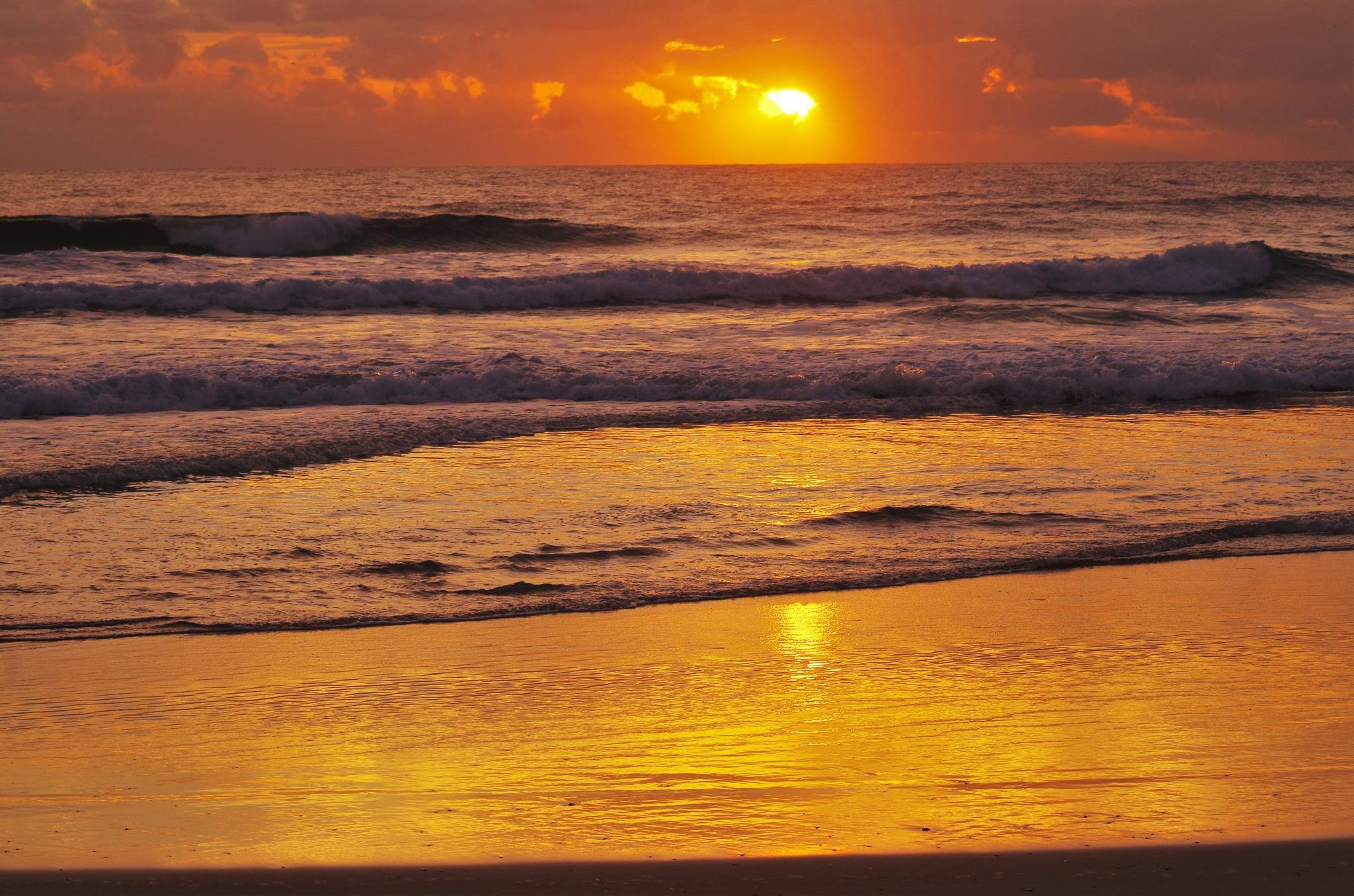 sun rise by koala55