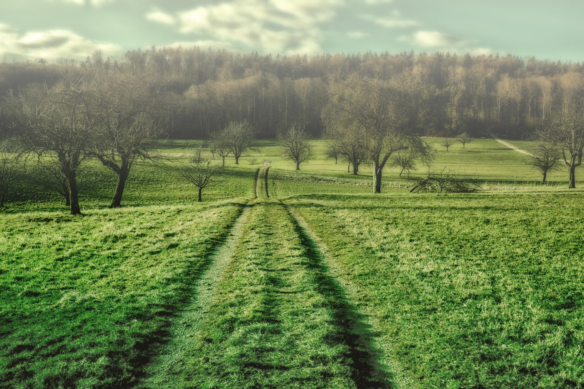 Landschafts-Experiment by Hansjuerg Buehler