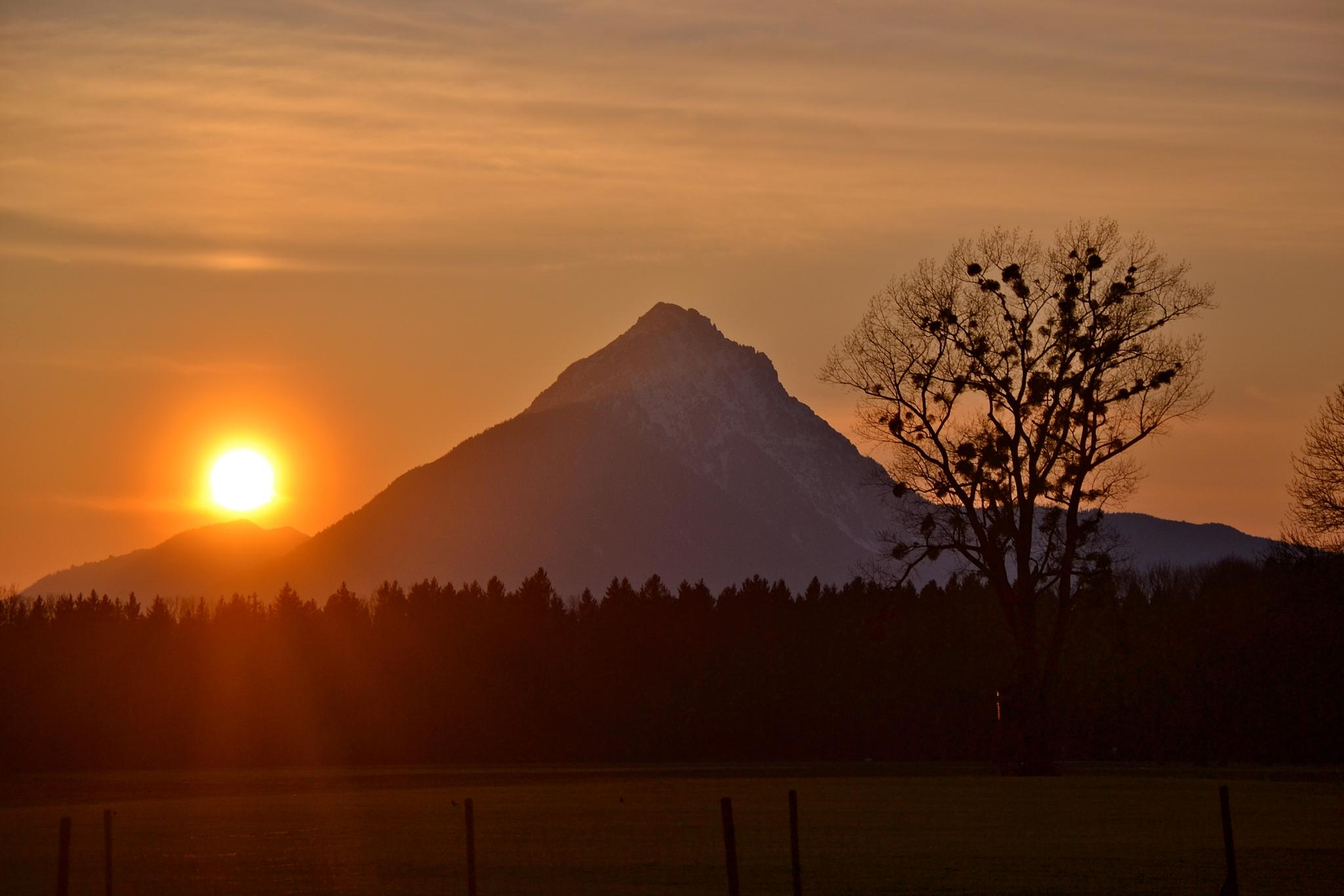 The sun, the pyramid and the tree by echumachenco