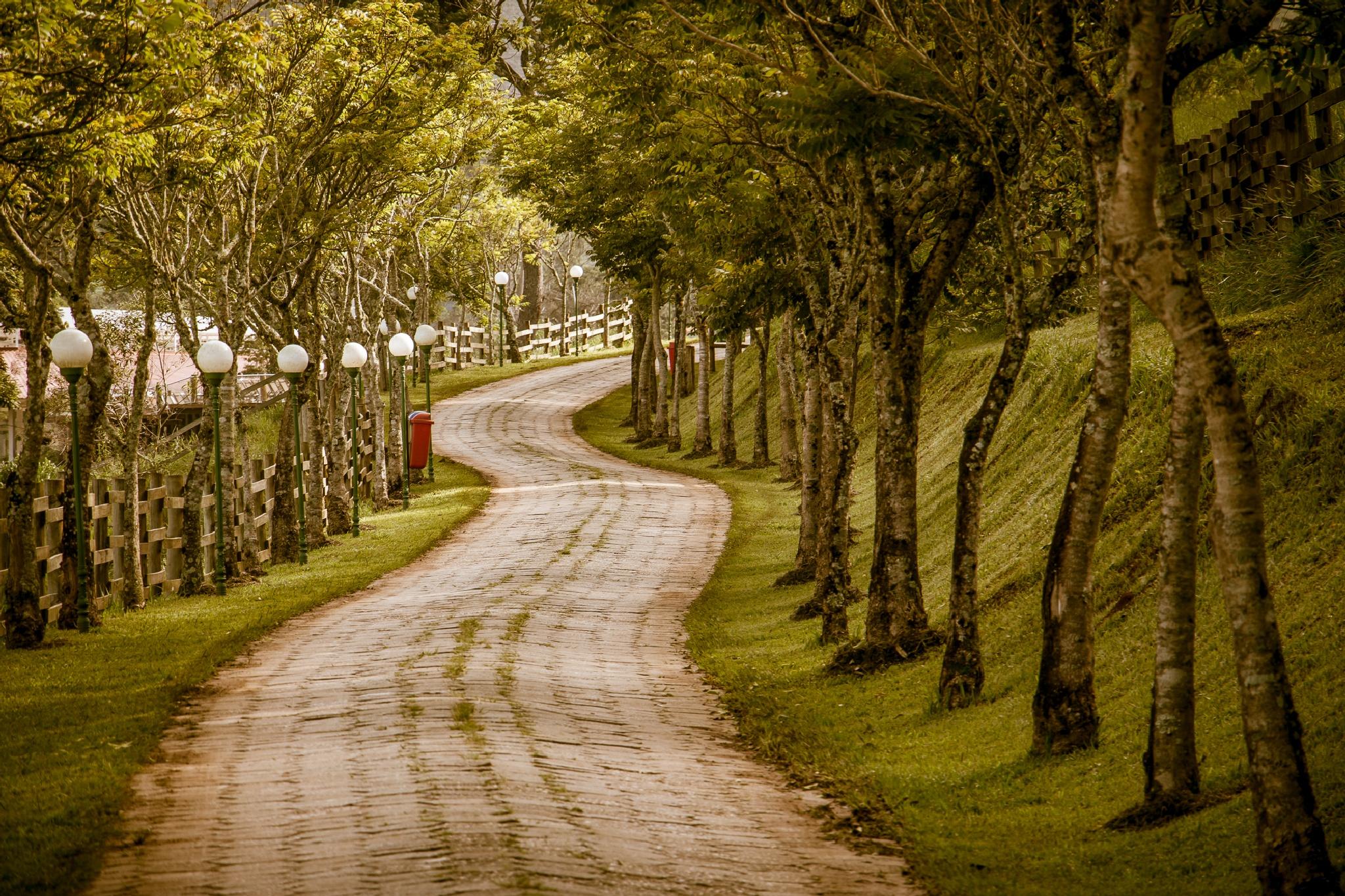 A Walk  by Marcelo Garcia