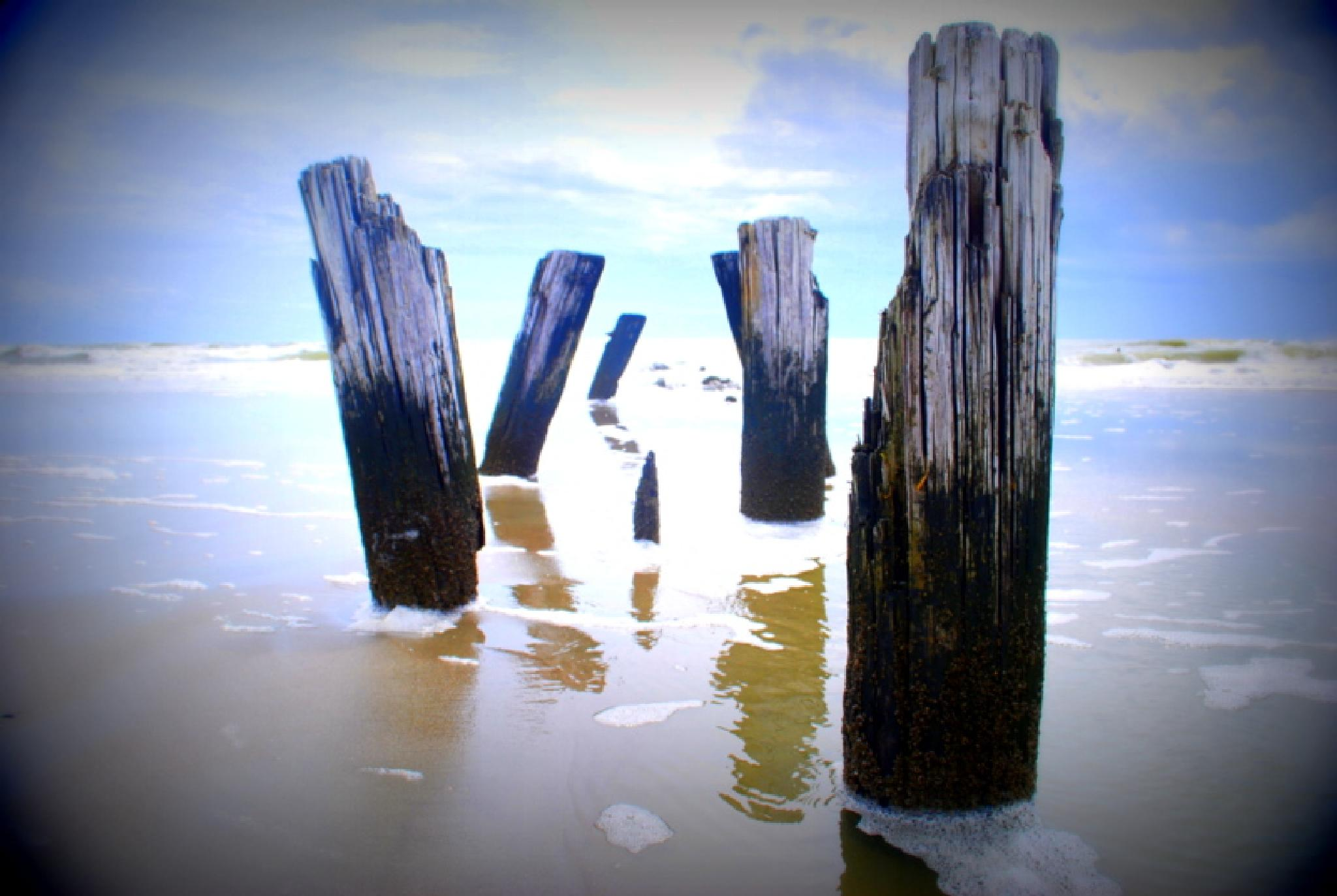 Old Pier by Shannon Smith