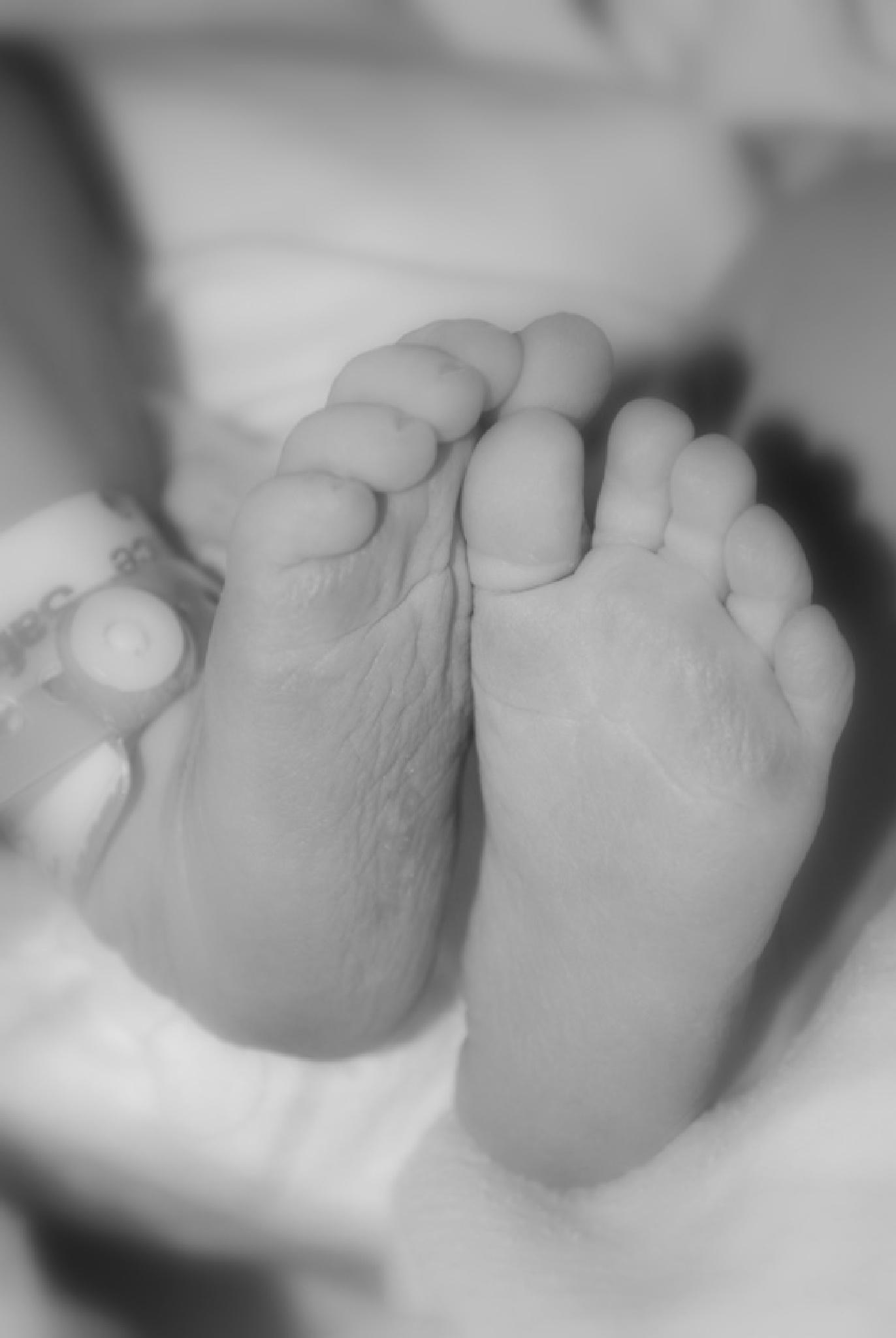 Little Feet by Shannon Smith