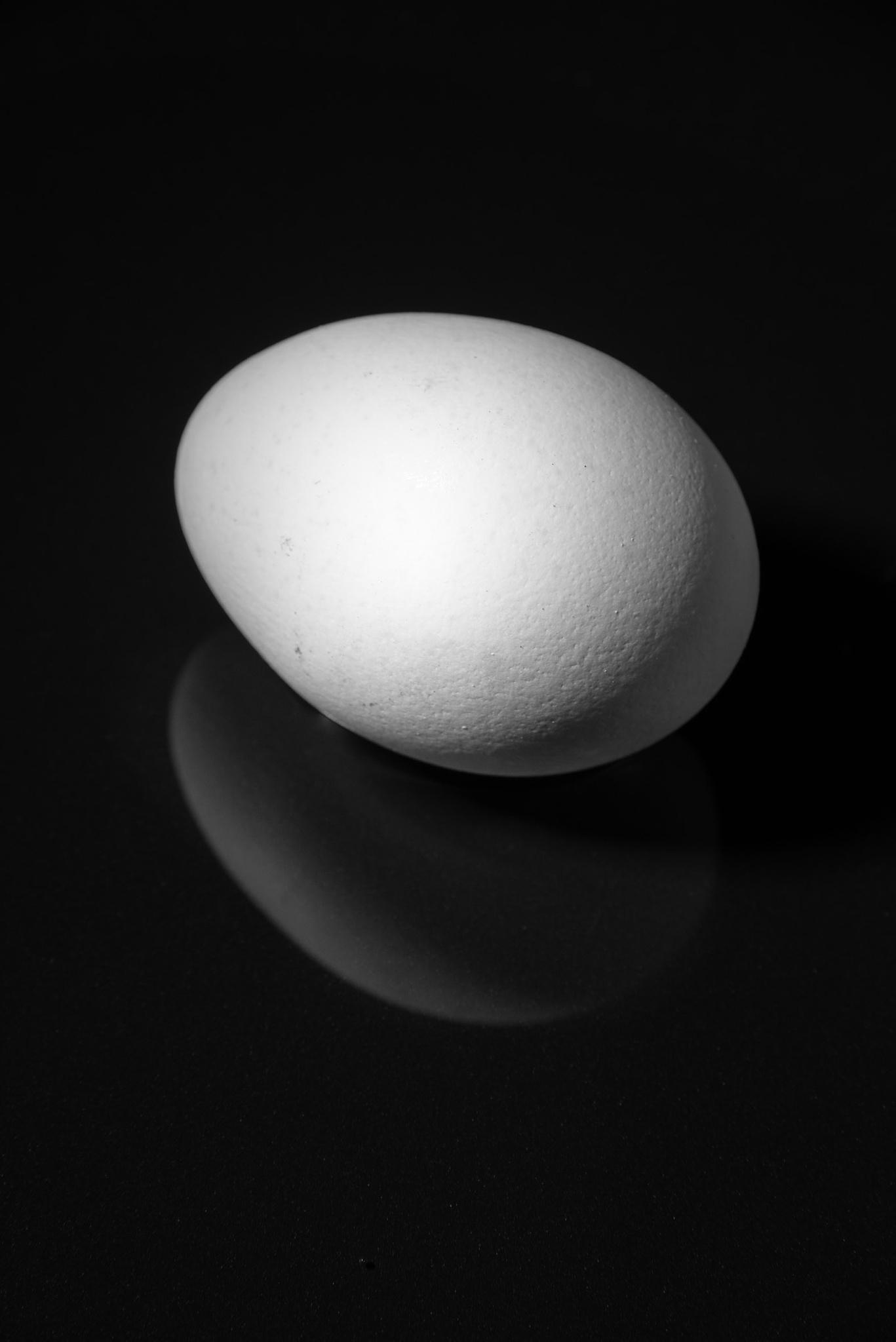 Egg by patrick.karlsson