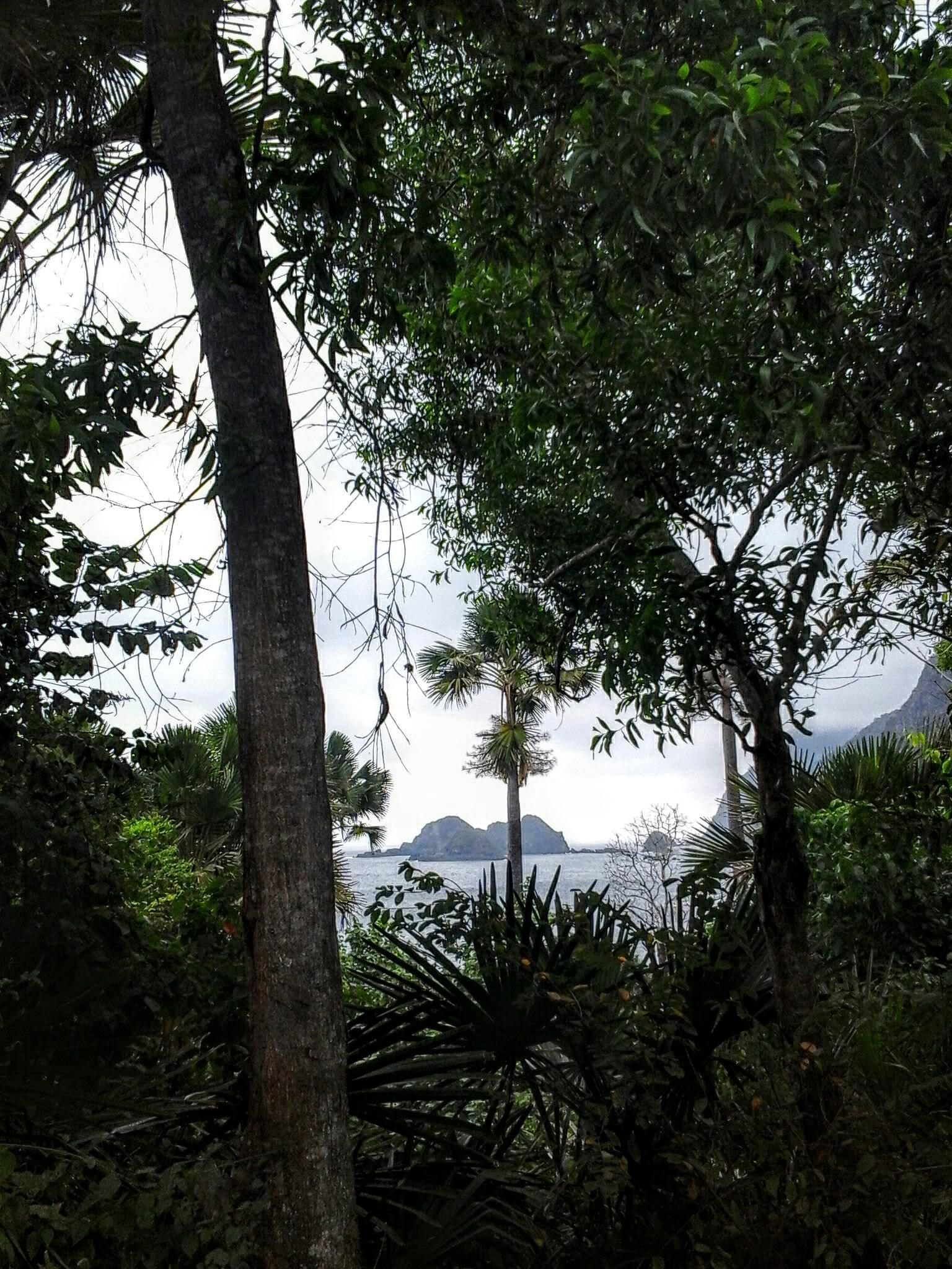 My little paradise by sefiharini