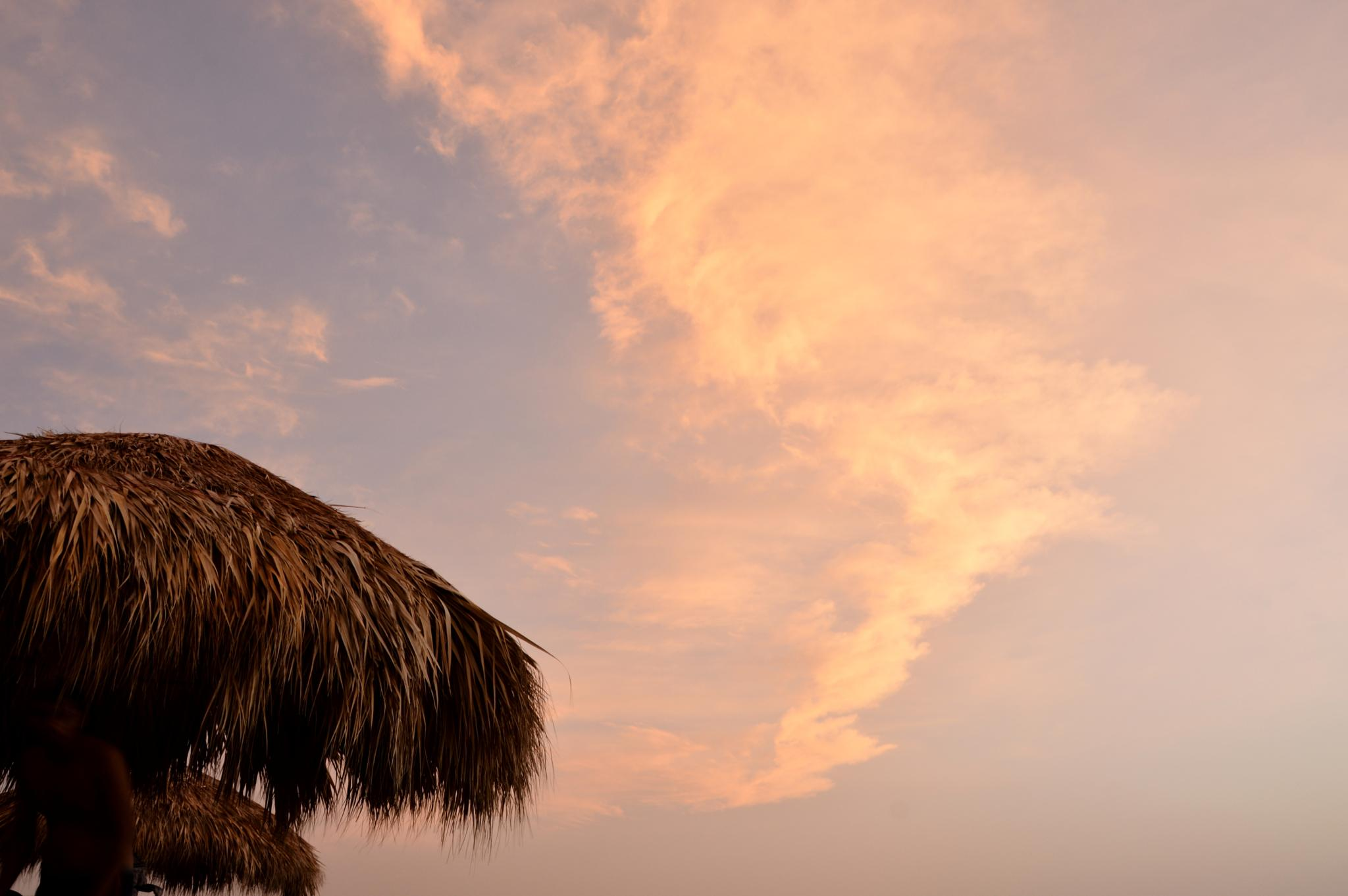 Palm roof and cloud by Ives Martinez