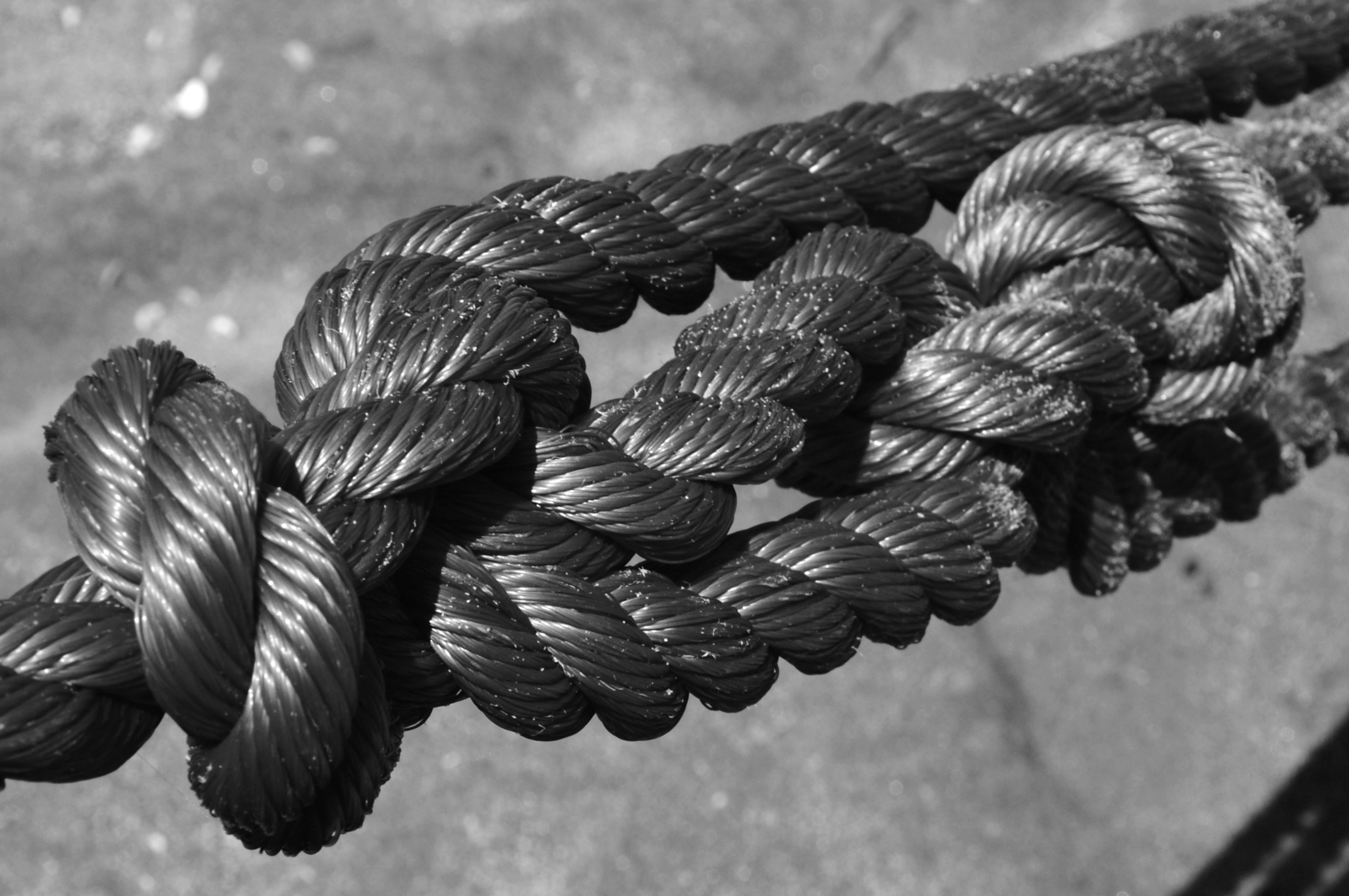 Knot by Ives Martinez