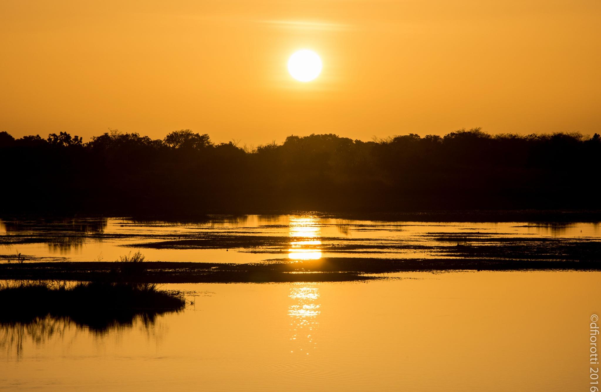Amazon sunrise by Devair Fiorotti