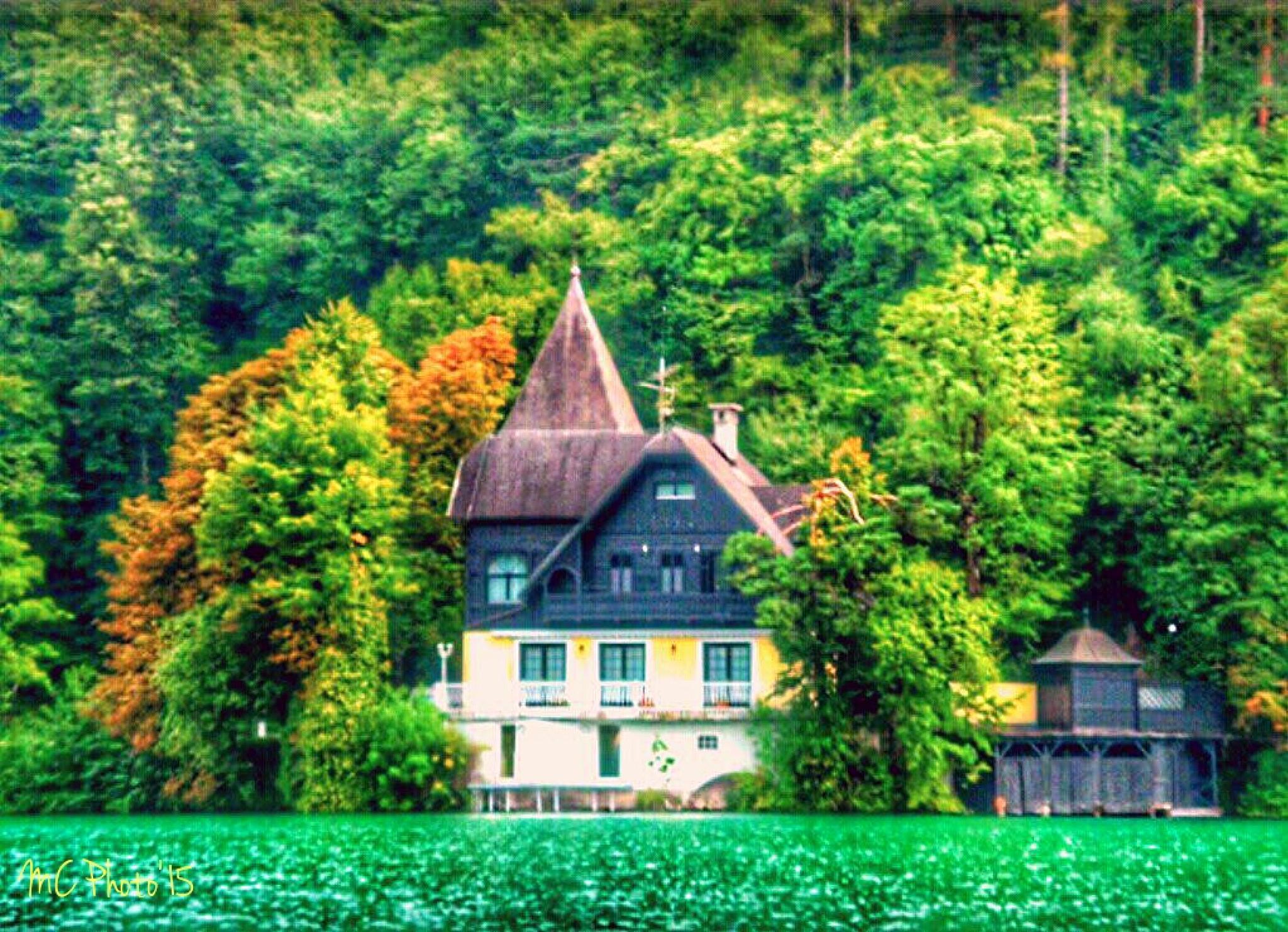Lakehouse by Mario Cilia
