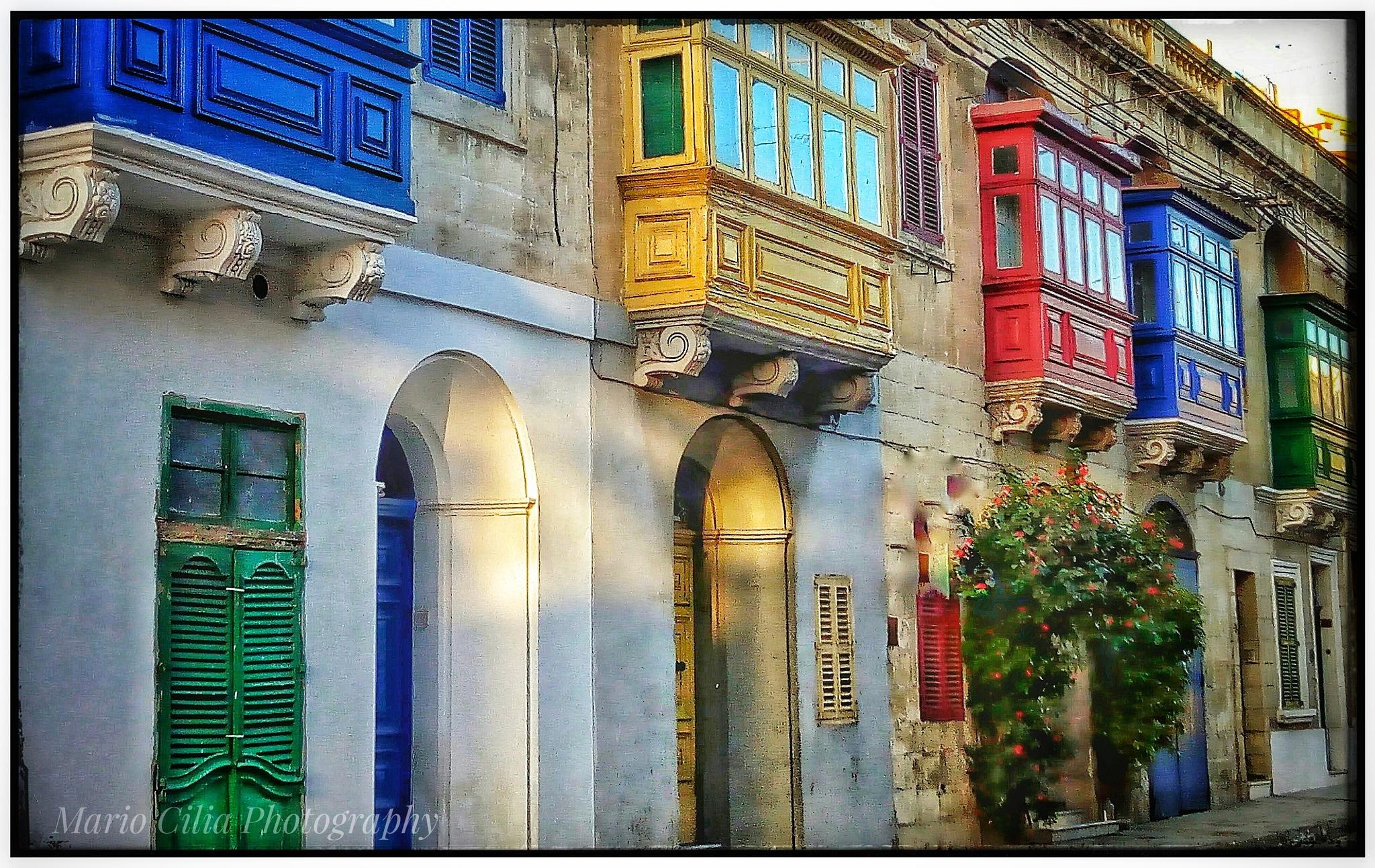 Colors by Mario Cilia