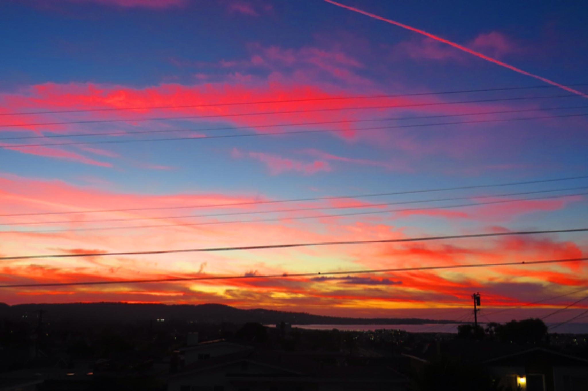 IMG_1941 by soulofcentralcoast