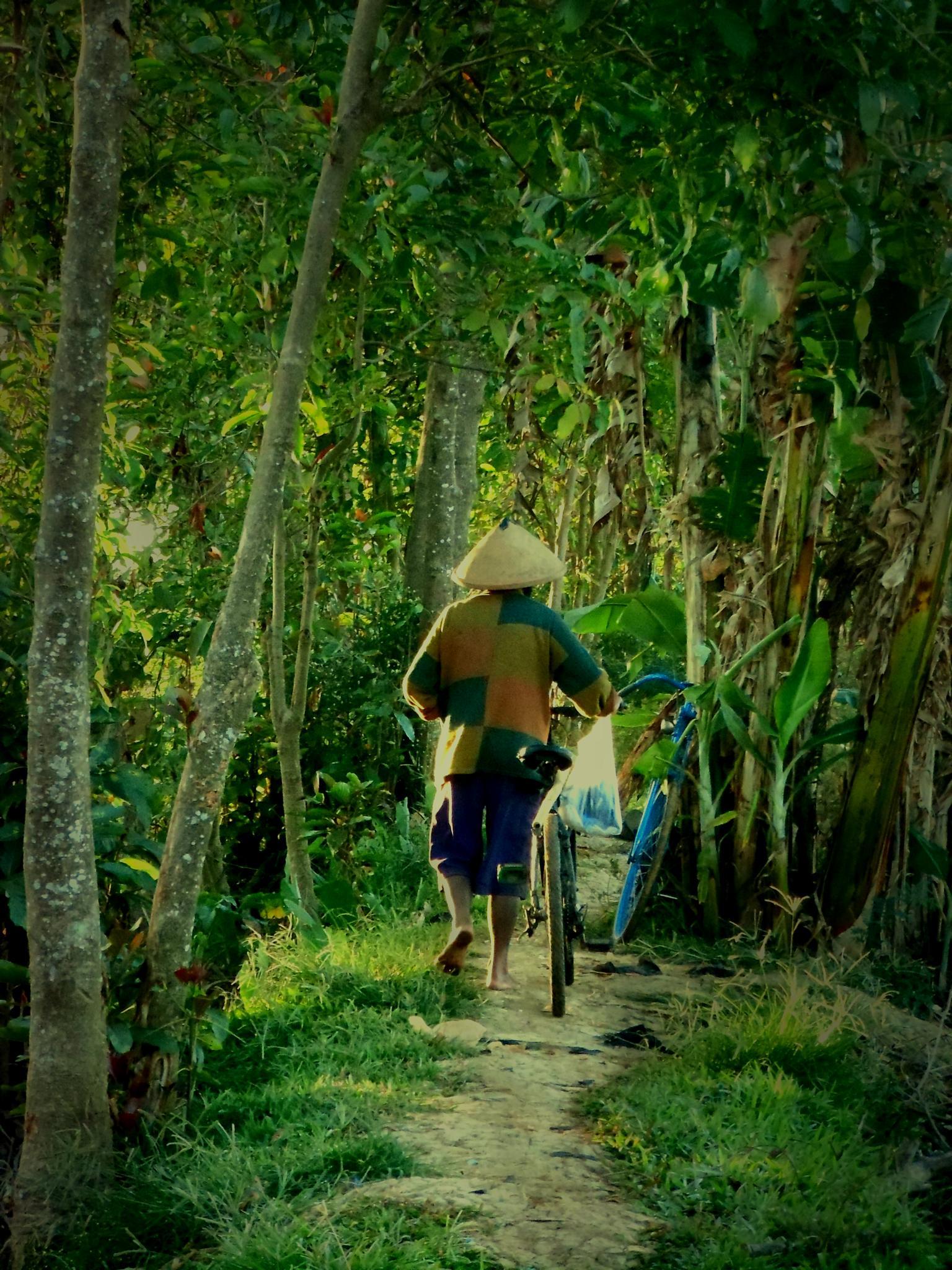 to the field by suhartono