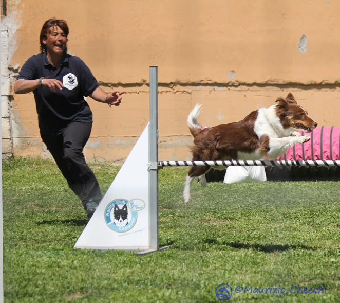 agility by maurizio