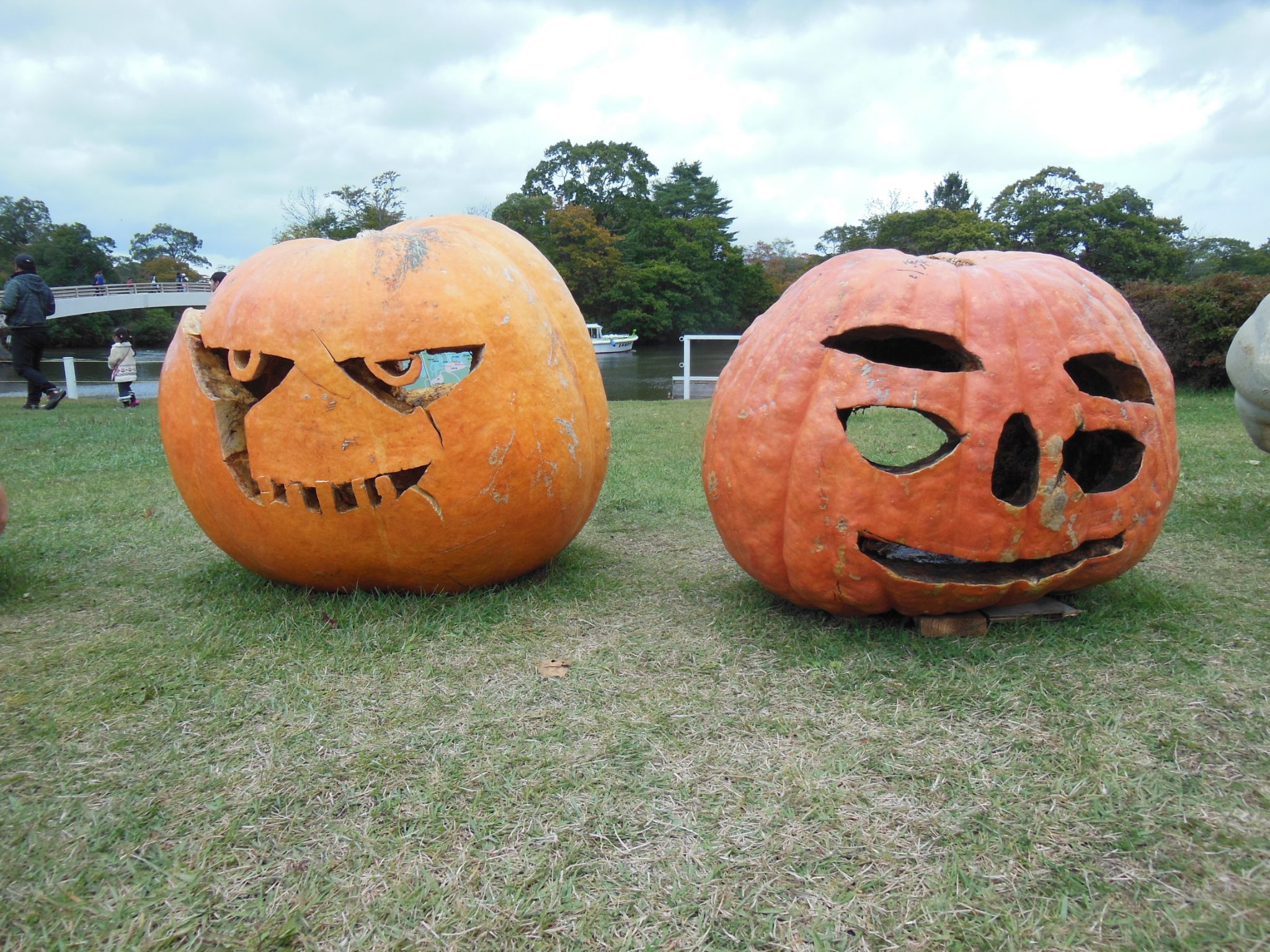 Pumpkins with Face by Takeo T.
