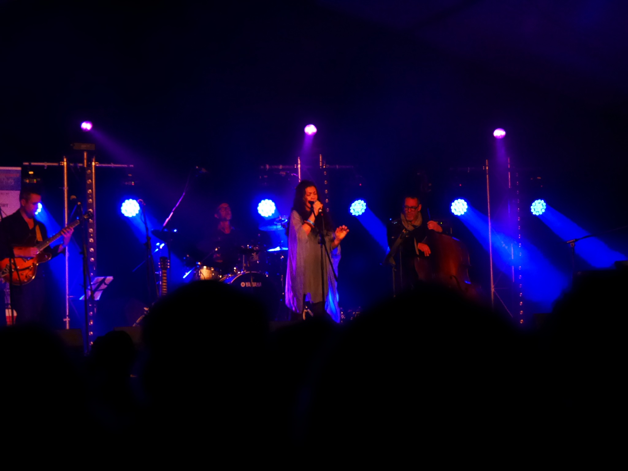 music festival Bondi by tonyhart