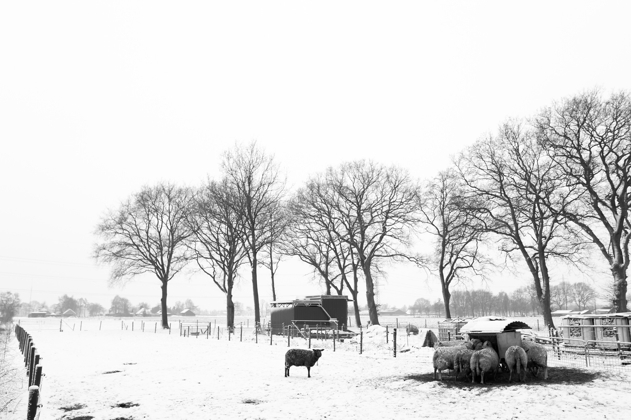 Drenthe, The Netherlands by HansJongman