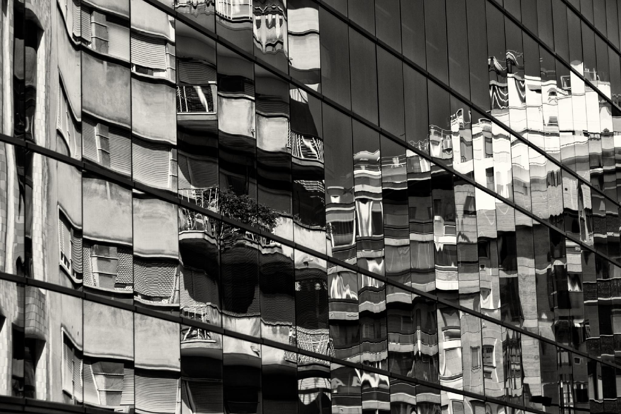 reflection by Amelia Monteiro