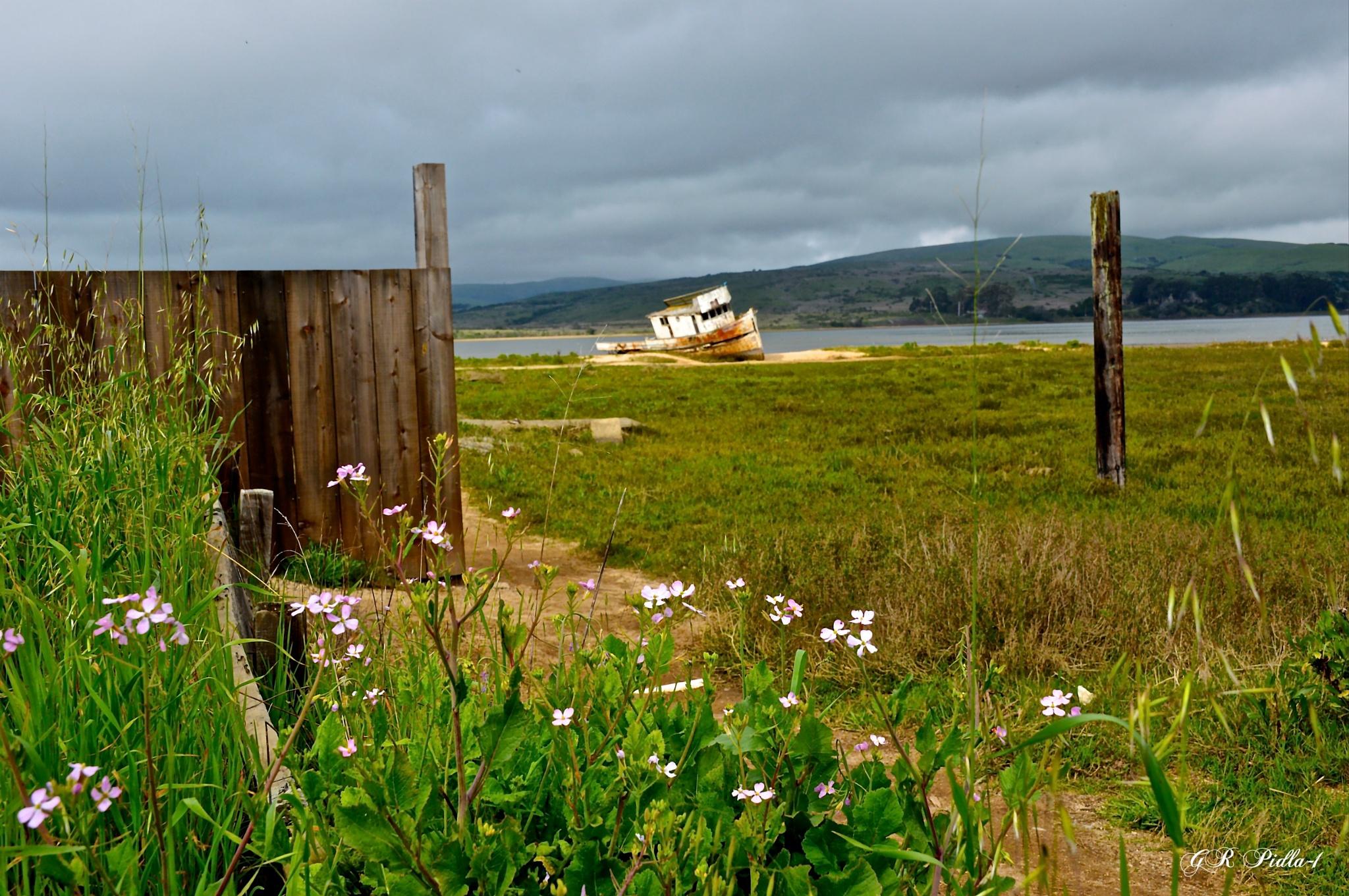 Point Reyes Shipwreck by Gina  Alwaysmile (*_*)