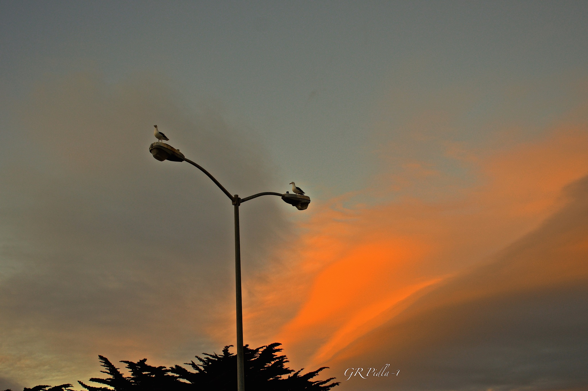Look Up To The Sky by Gina  Alwaysmile (*_*)