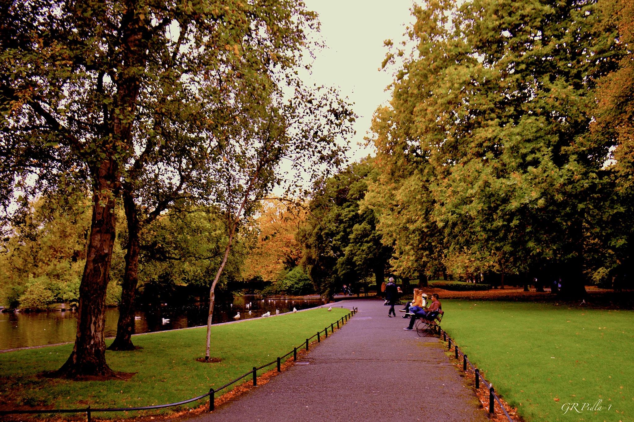 Stephen's Green Park by Gina  Alwaysmile (*_*)