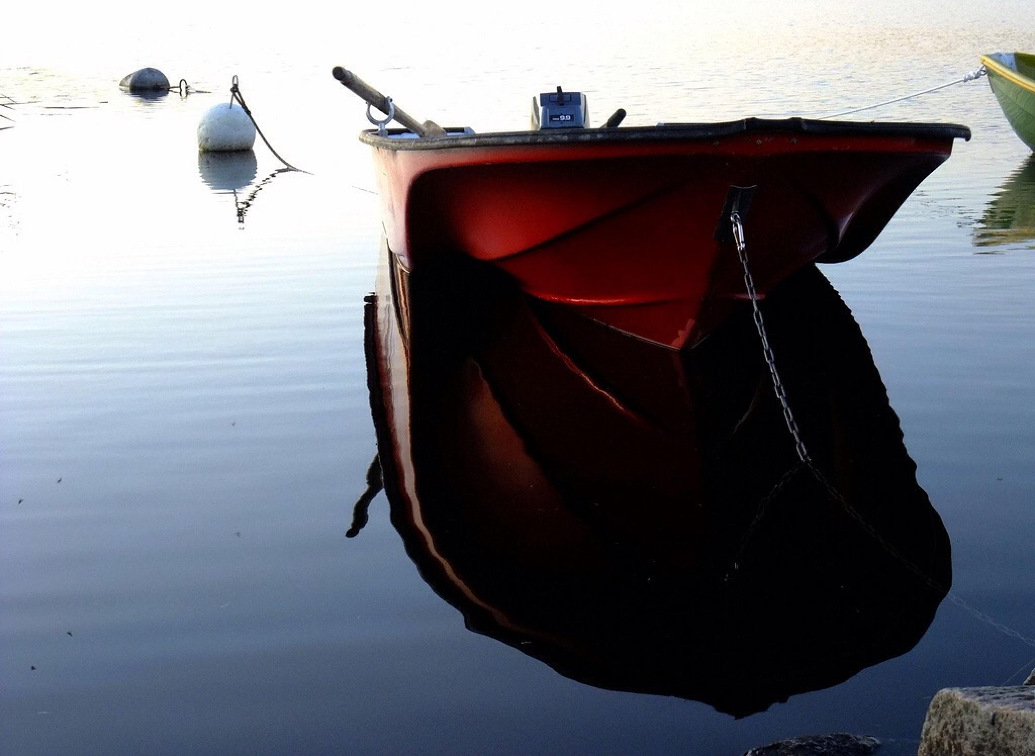 Dark Reflection  by Detlef F. Rimkus