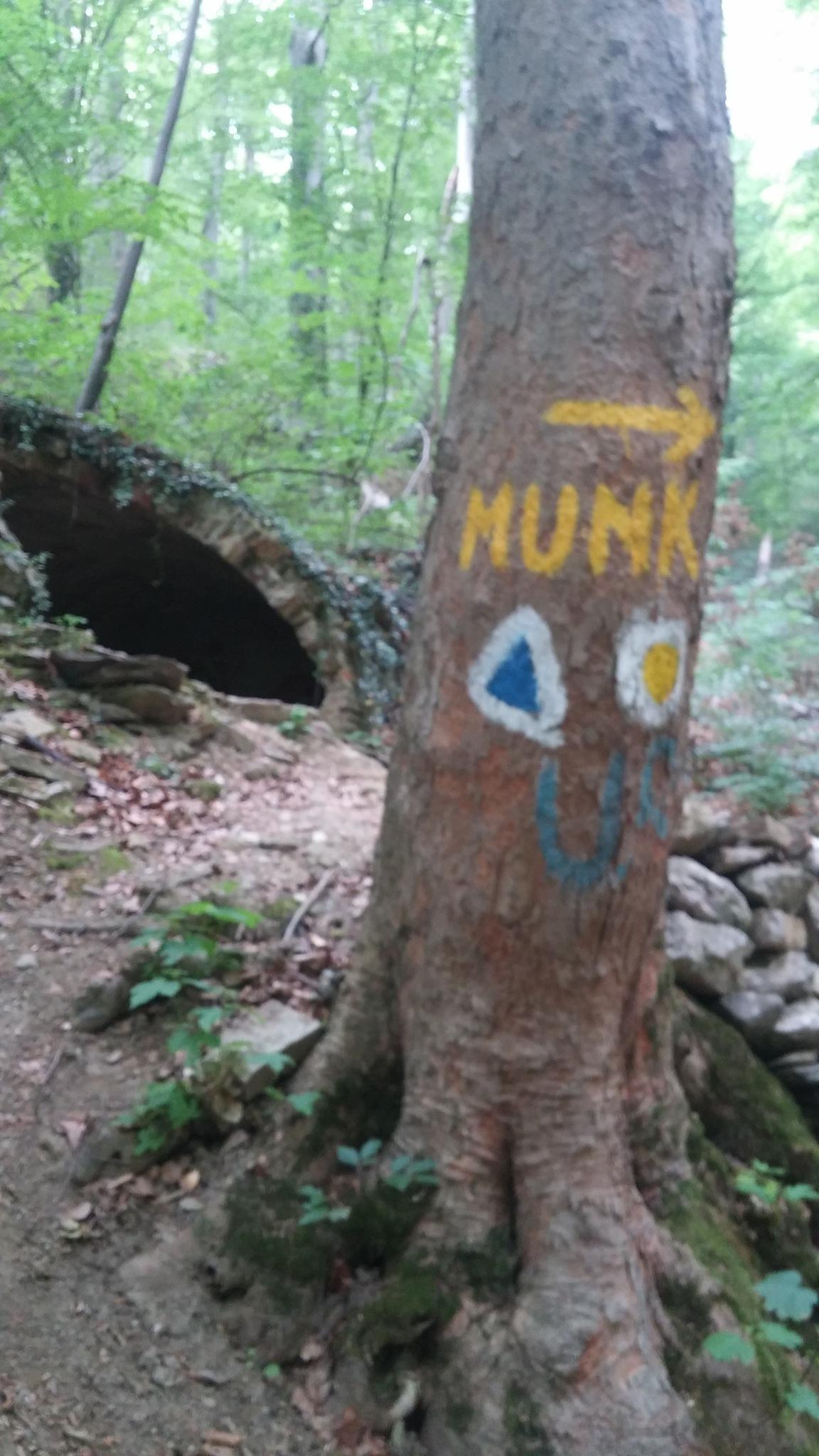 Izvorul Munk by marianatrailescu