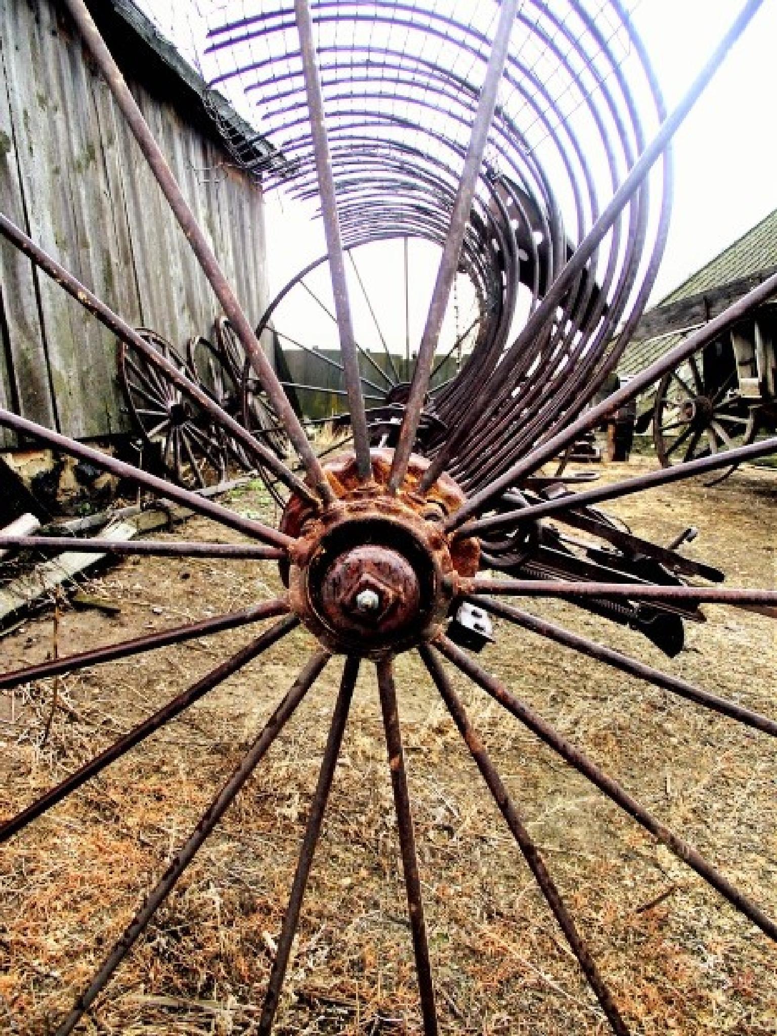 Antique farm equipment by lisawdayley