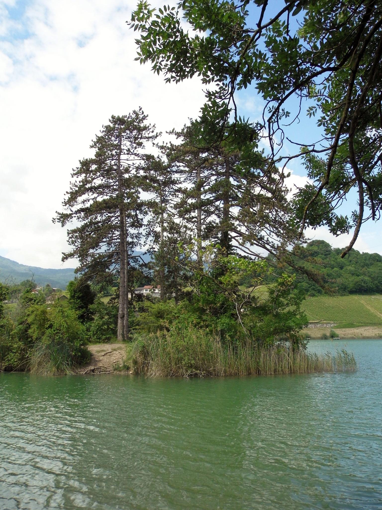 Savoie..... by christophe.maurel15