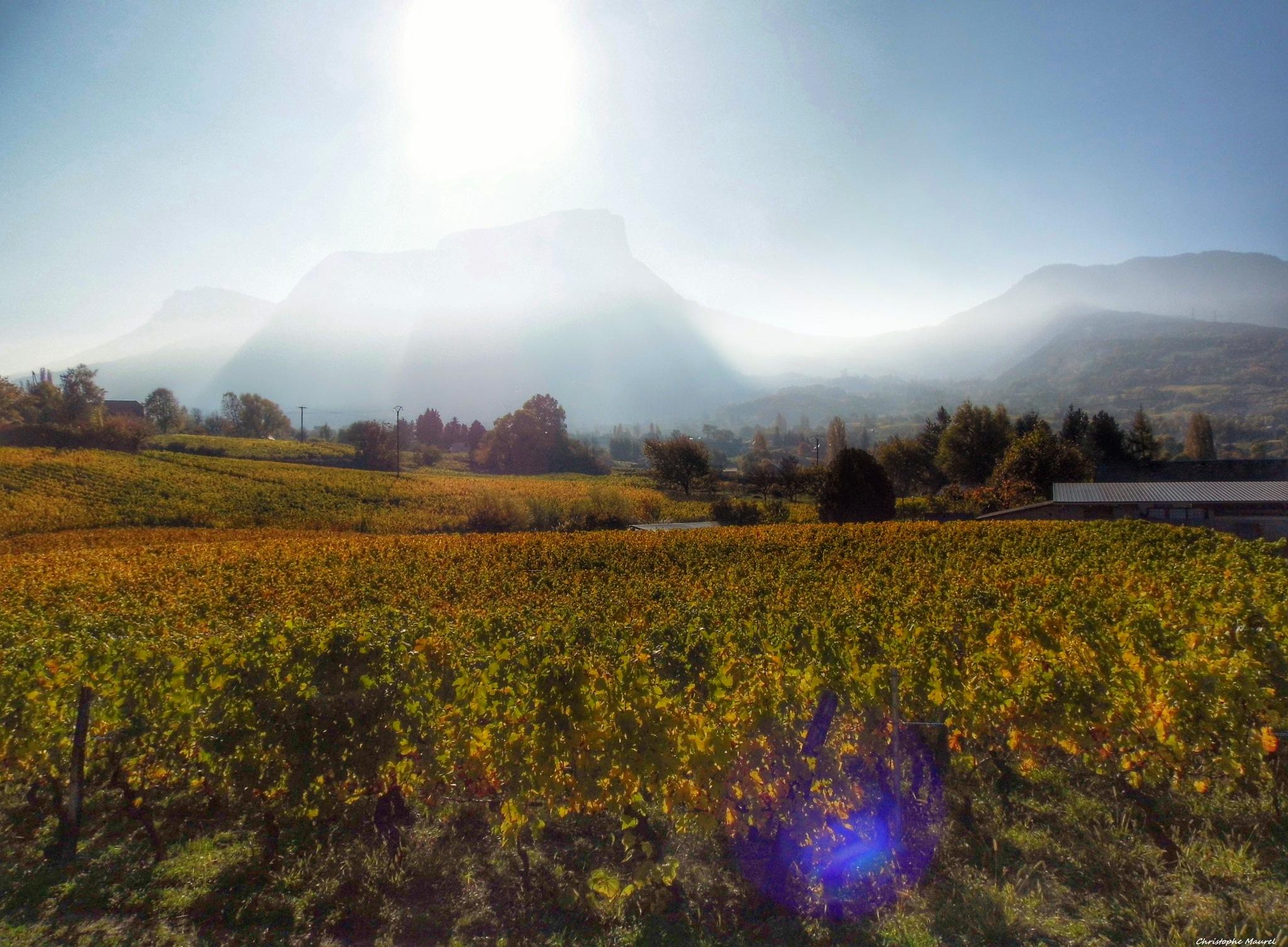 Savoie.....Mont-Granier. by christophe.maurel15