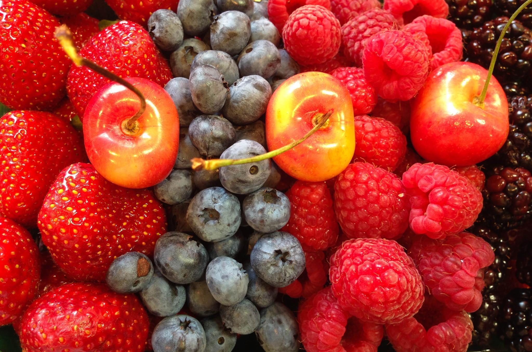 breakfast, farmer's market style... by jamesmerecki