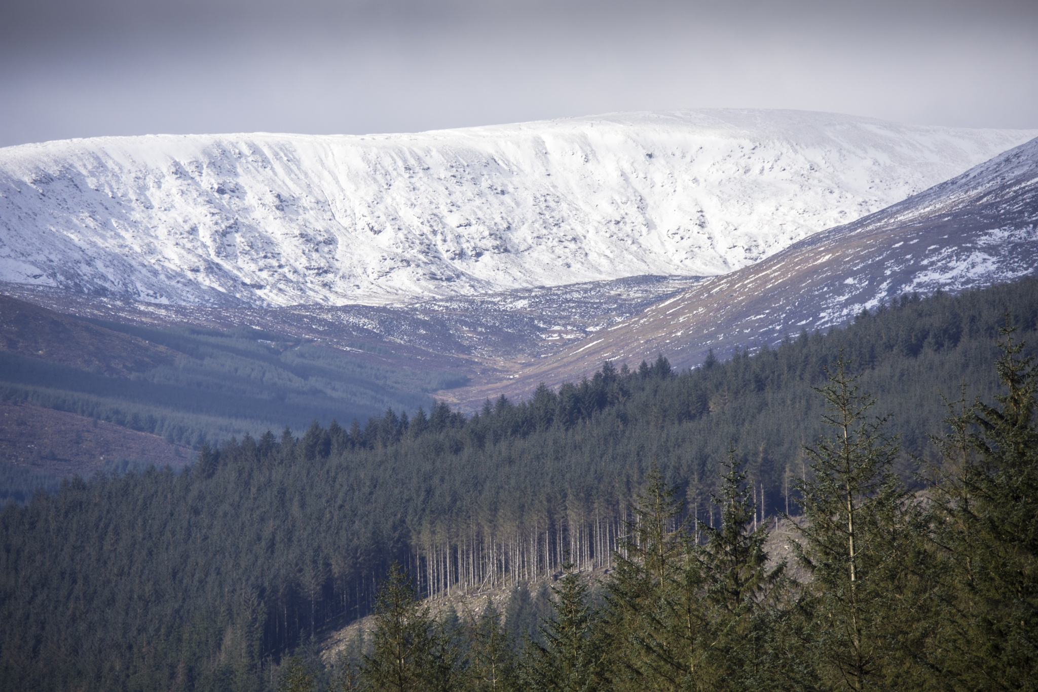 Wicklow mountains National Park. by Pat kehoe