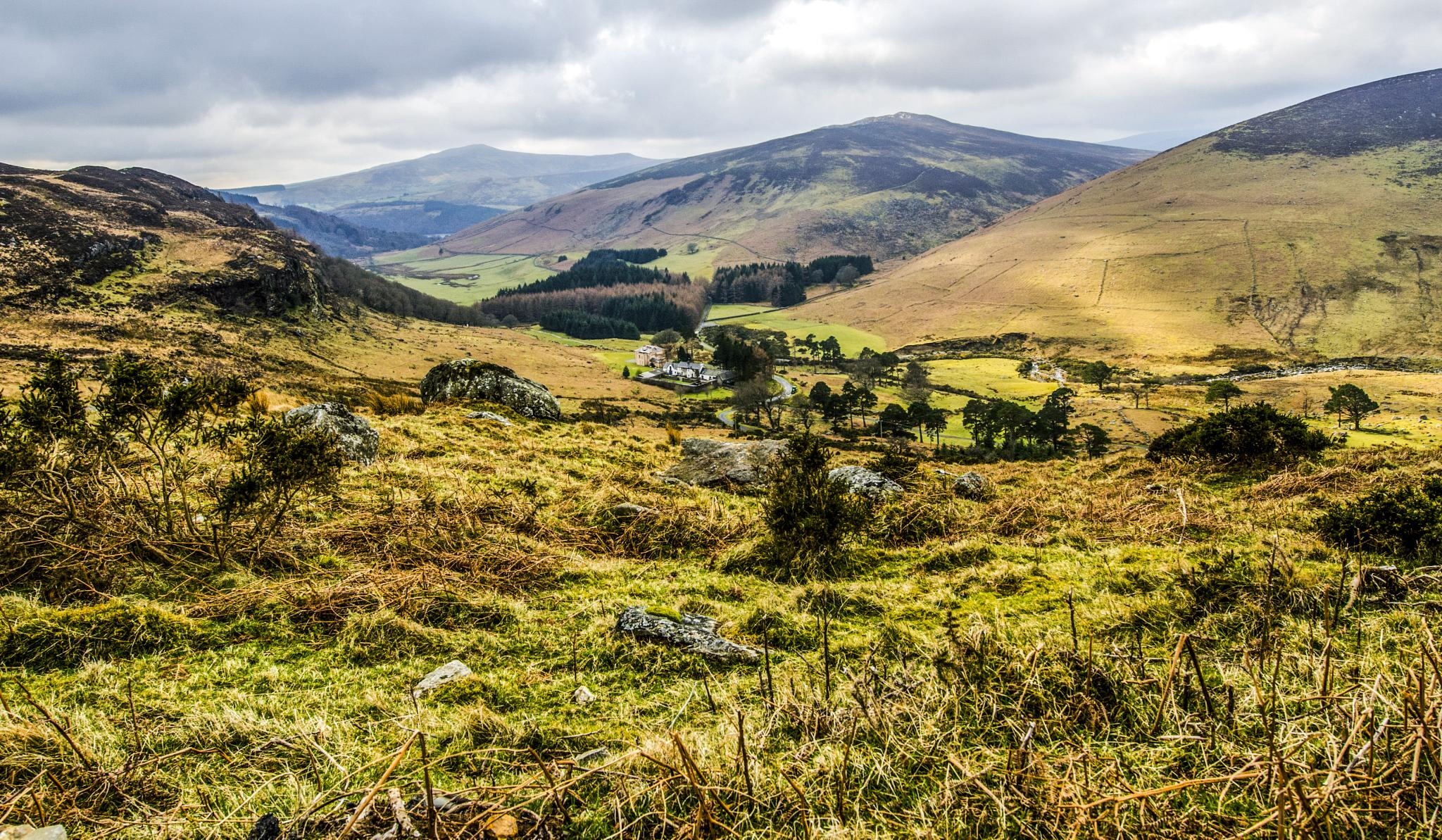Isolated Farm, Wicklow Mountains. by Pat kehoe