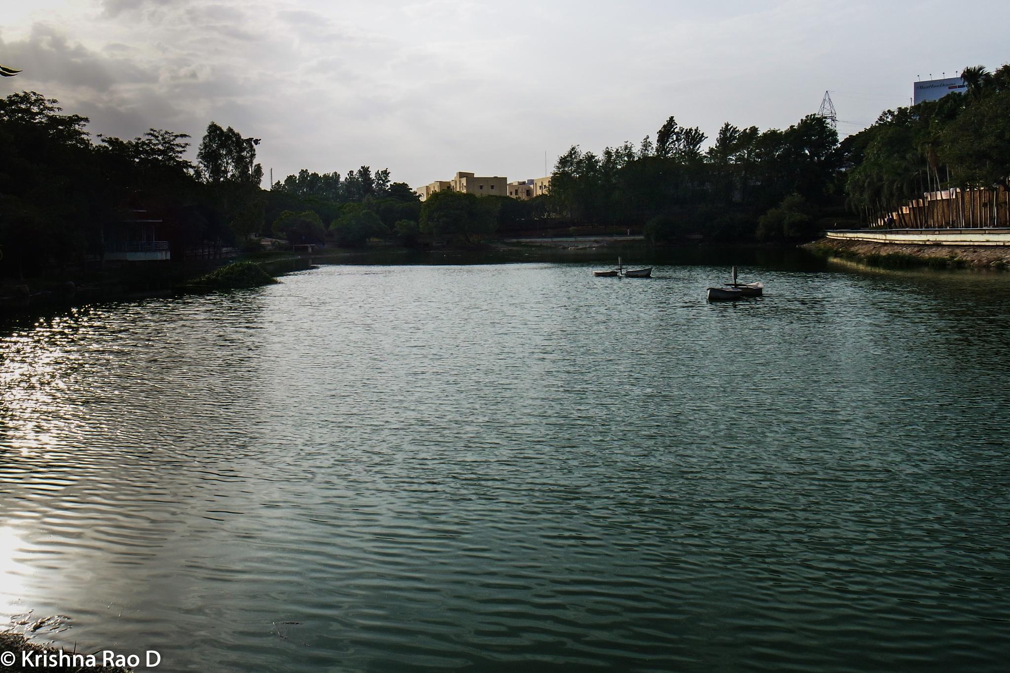 lake by Krishna Rao D