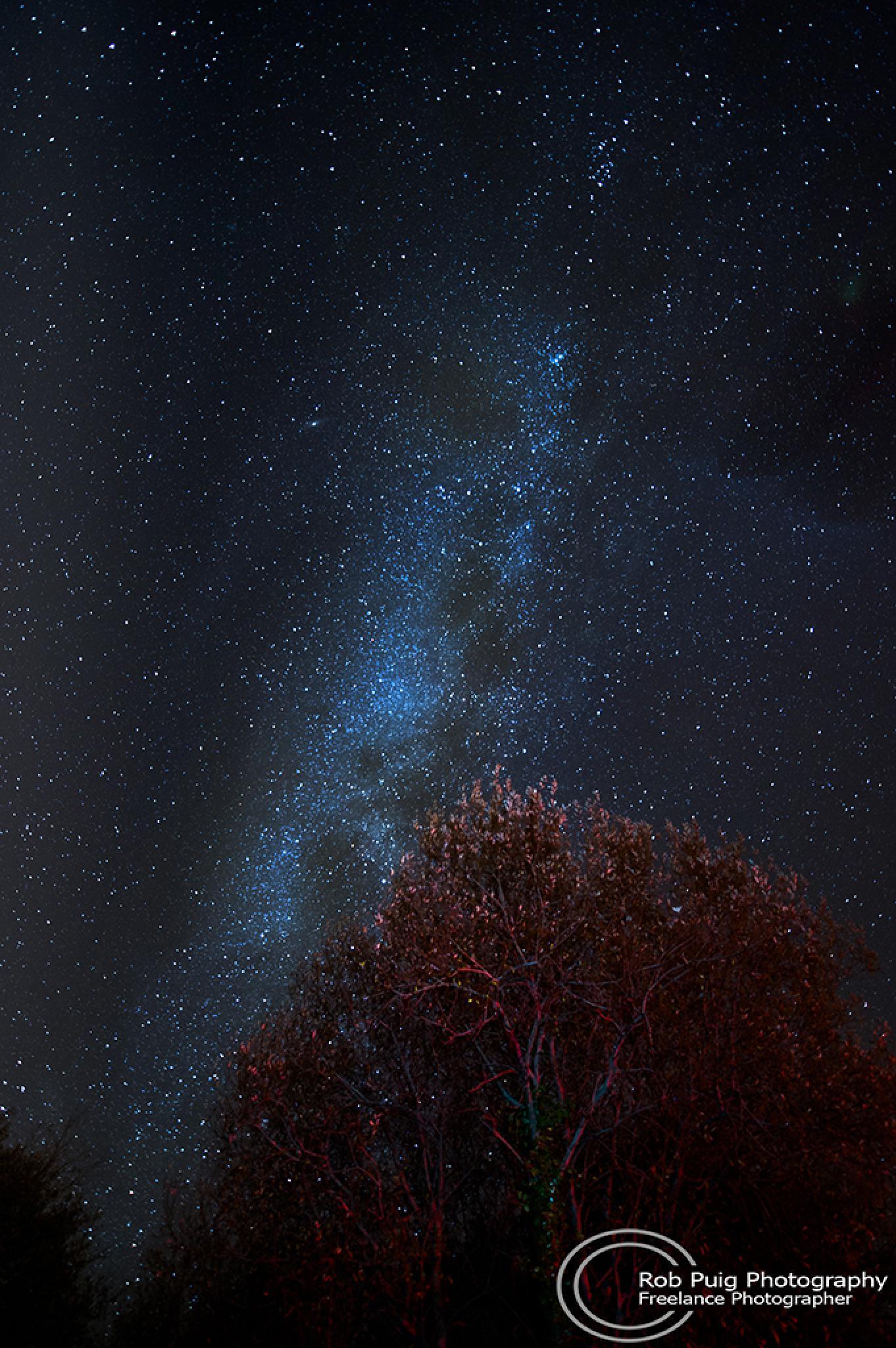 Sky at night by Robert Puig