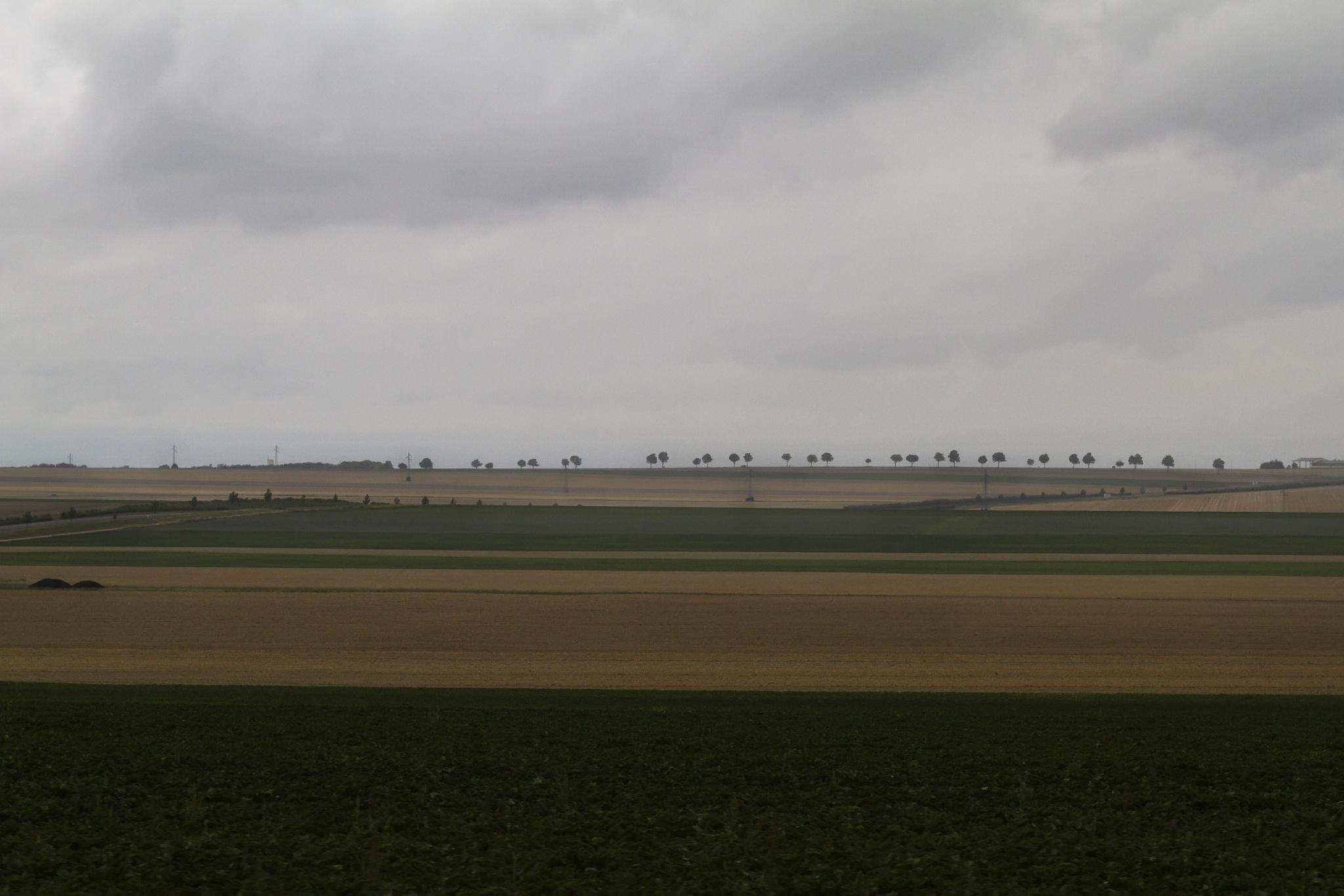 Landscape in France by JoseVerstegen