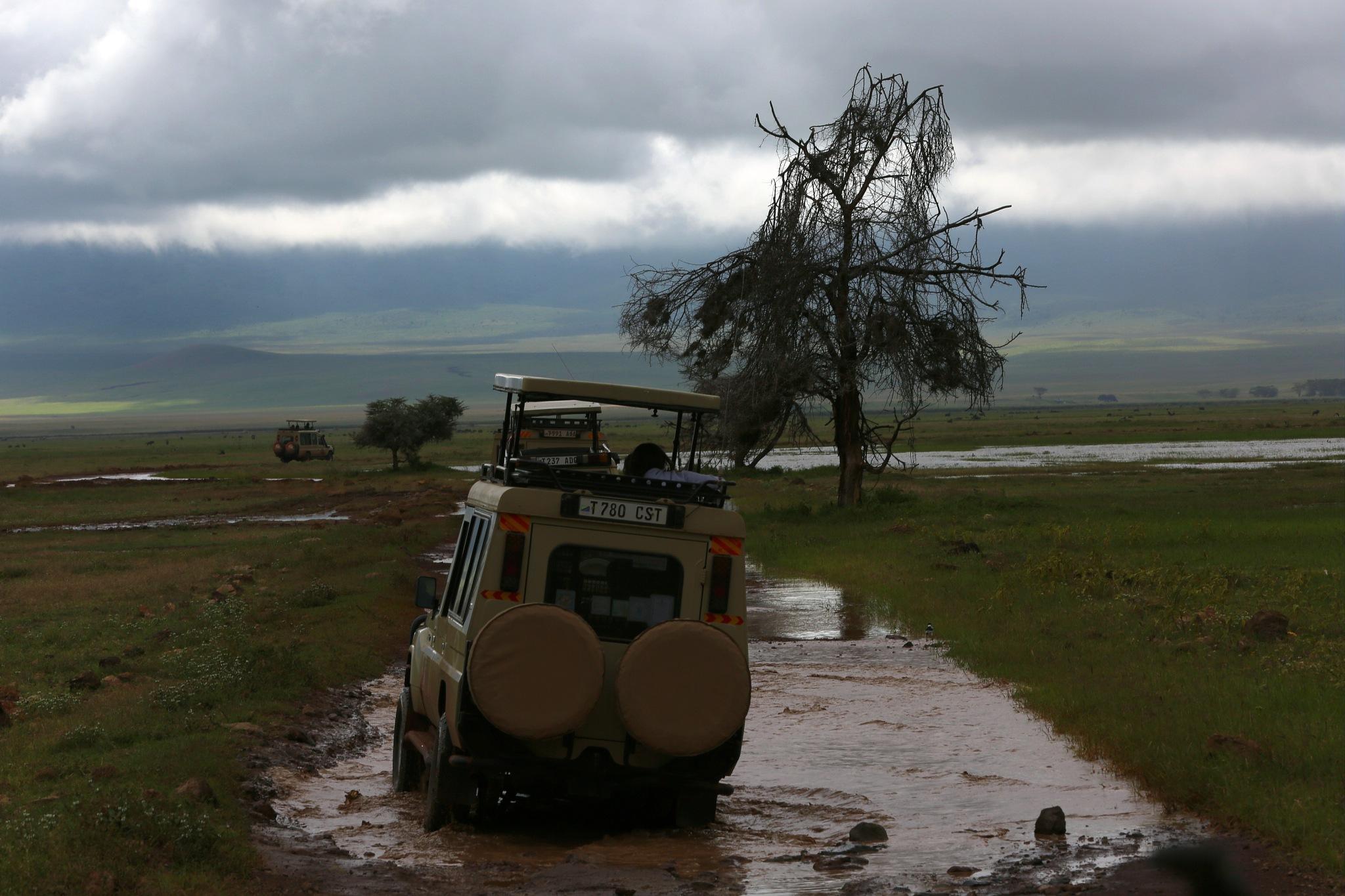 African Vistas by robteilets