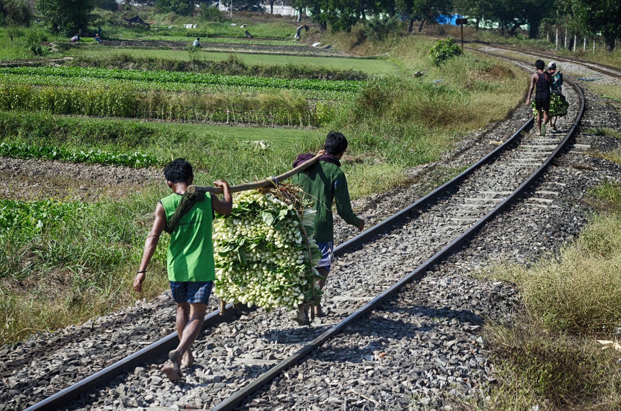 Circular train, Yangon, Myanmar by jeece69